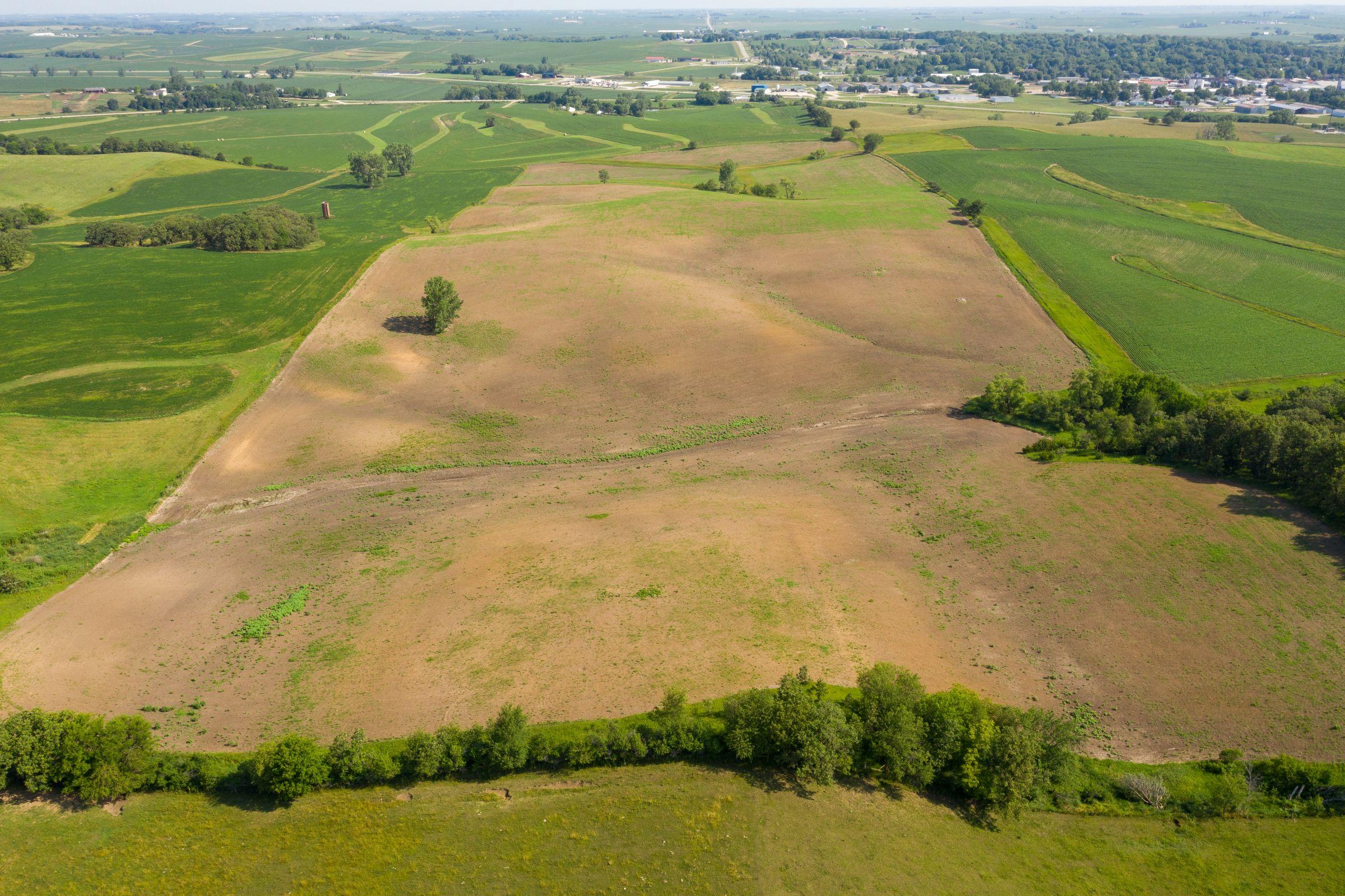 Garst Farms Auction