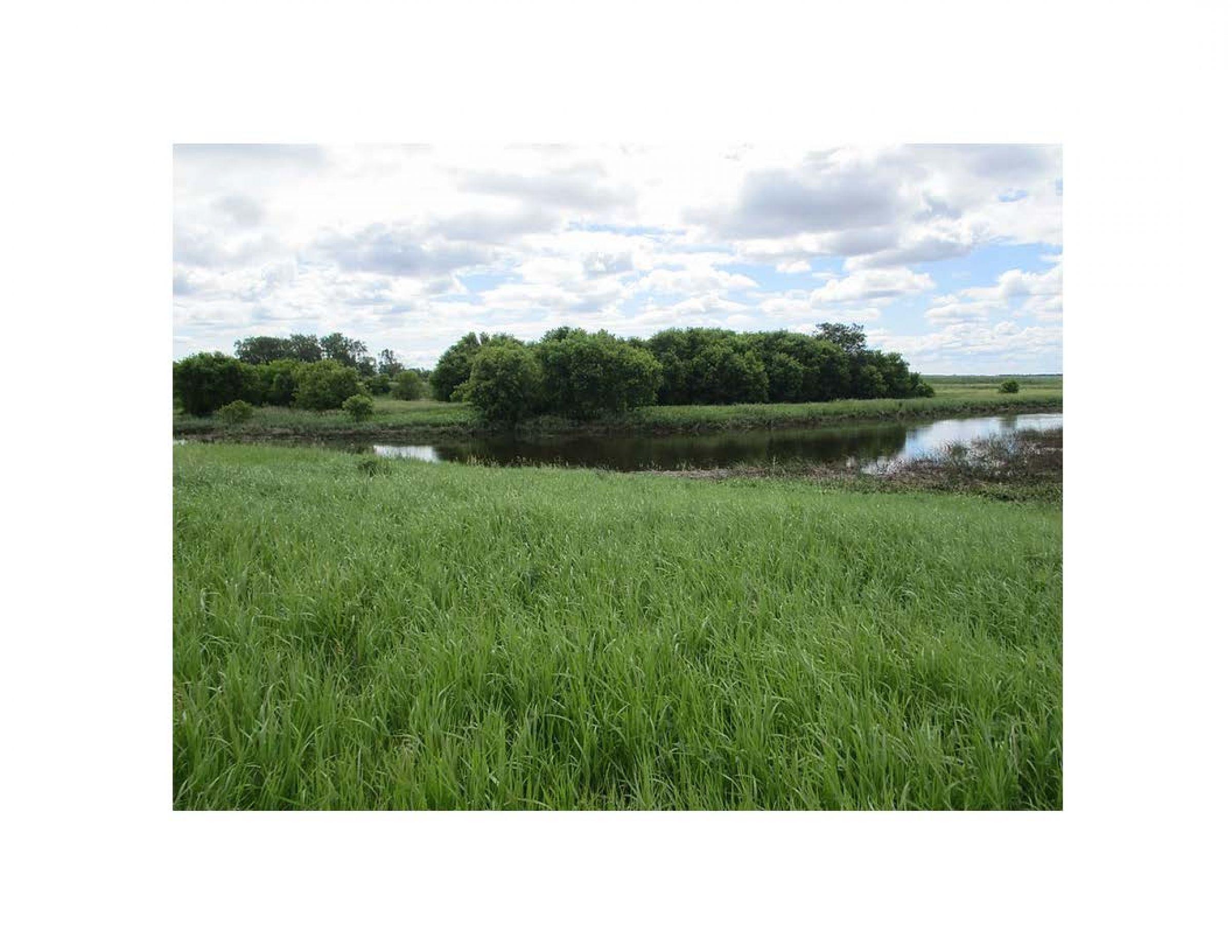 land-traill-county-north-dakota-25-acres-listing-number-15613-2-2021-06-24-191717.jpg