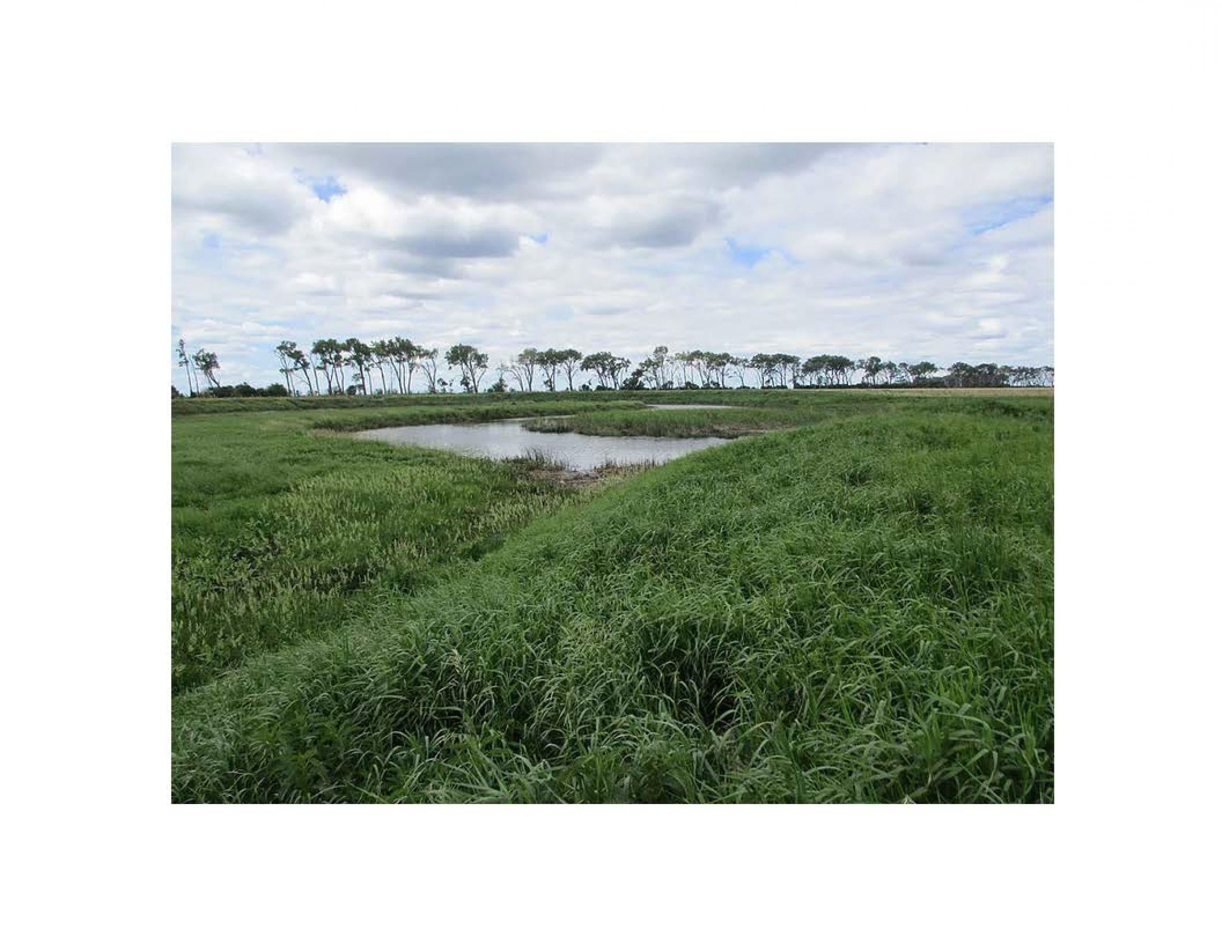 land-traill-county-north-dakota-25-acres-listing-number-15613-3-2021-06-24-191717.jpg