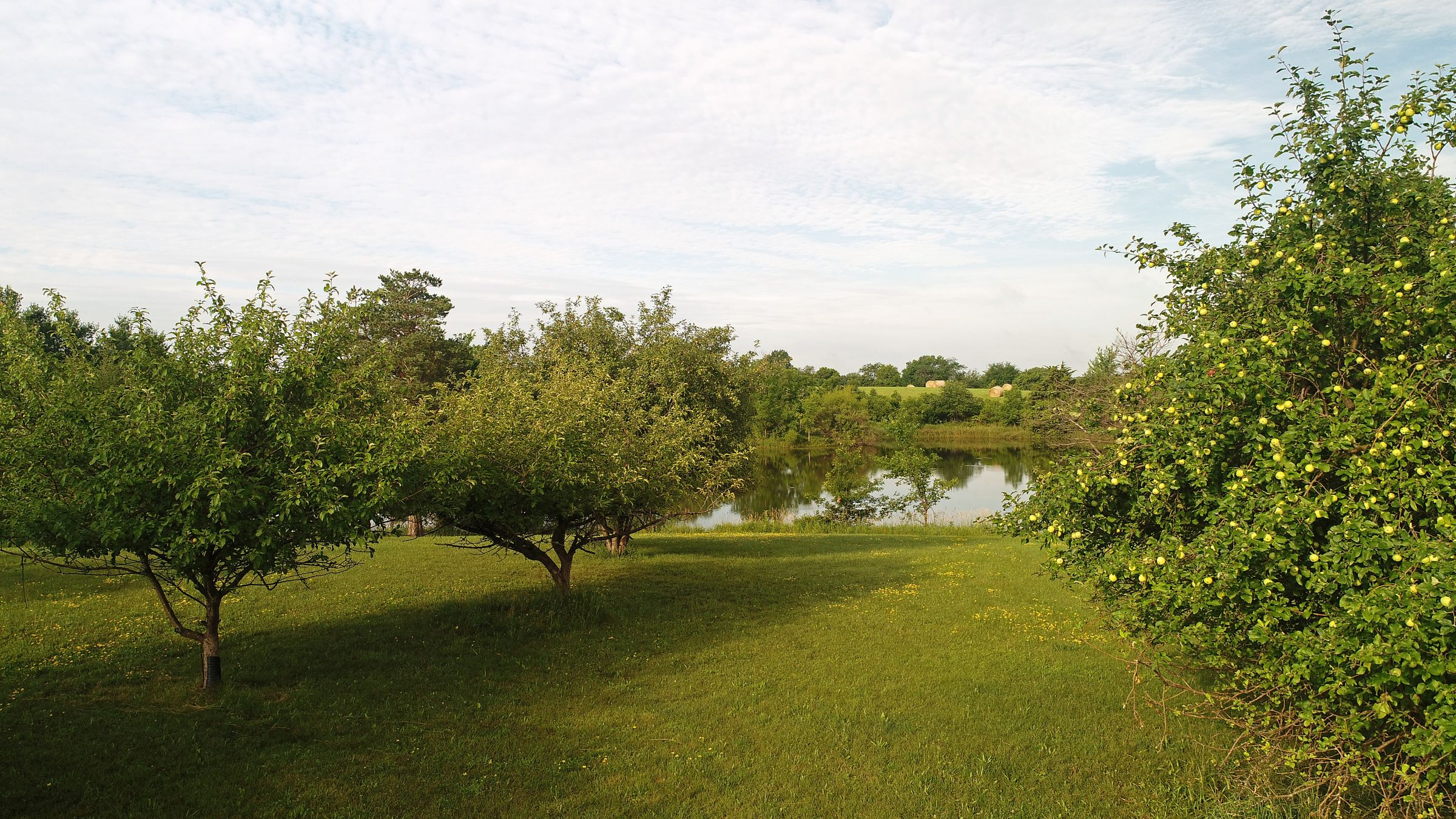 residential-lucas-county-iowa-9-acres-listing-number-15618-4-2021-06-30-170625.JPG