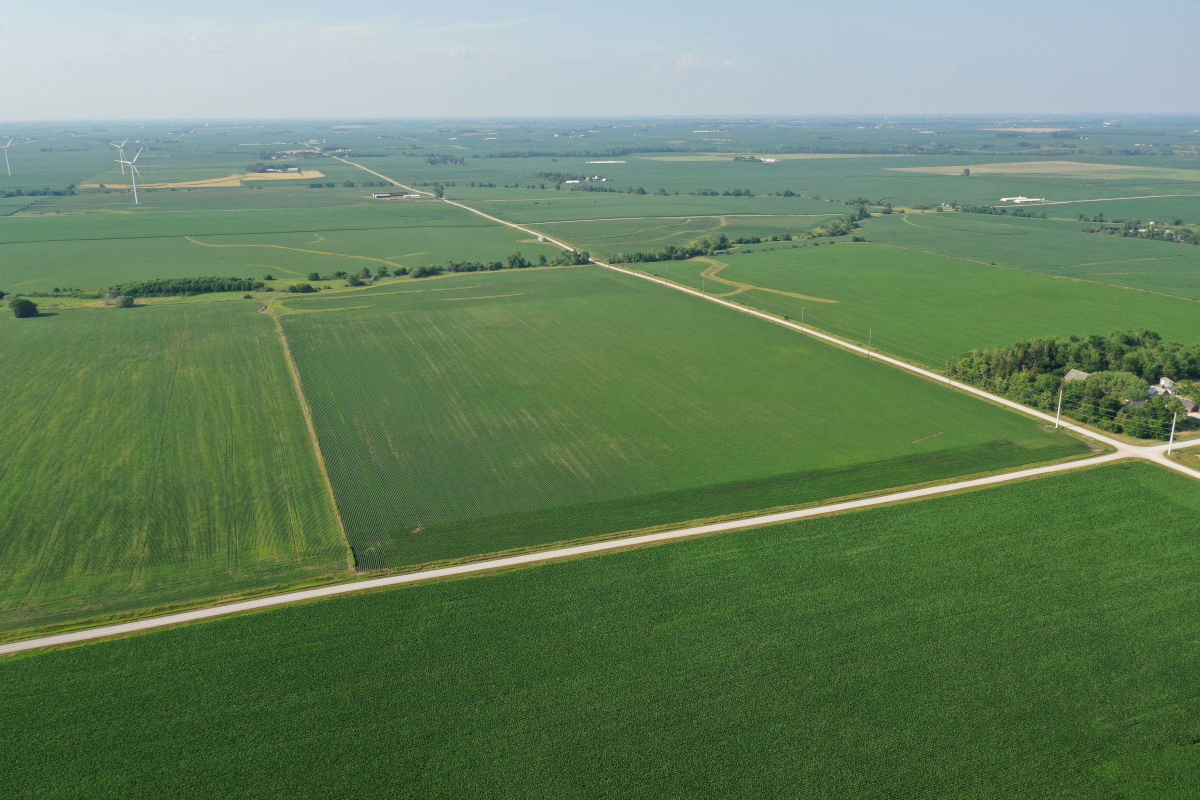 land-story-county-iowa-80-acres-listing-number-15620-0-2021-07-08-174407.JPG