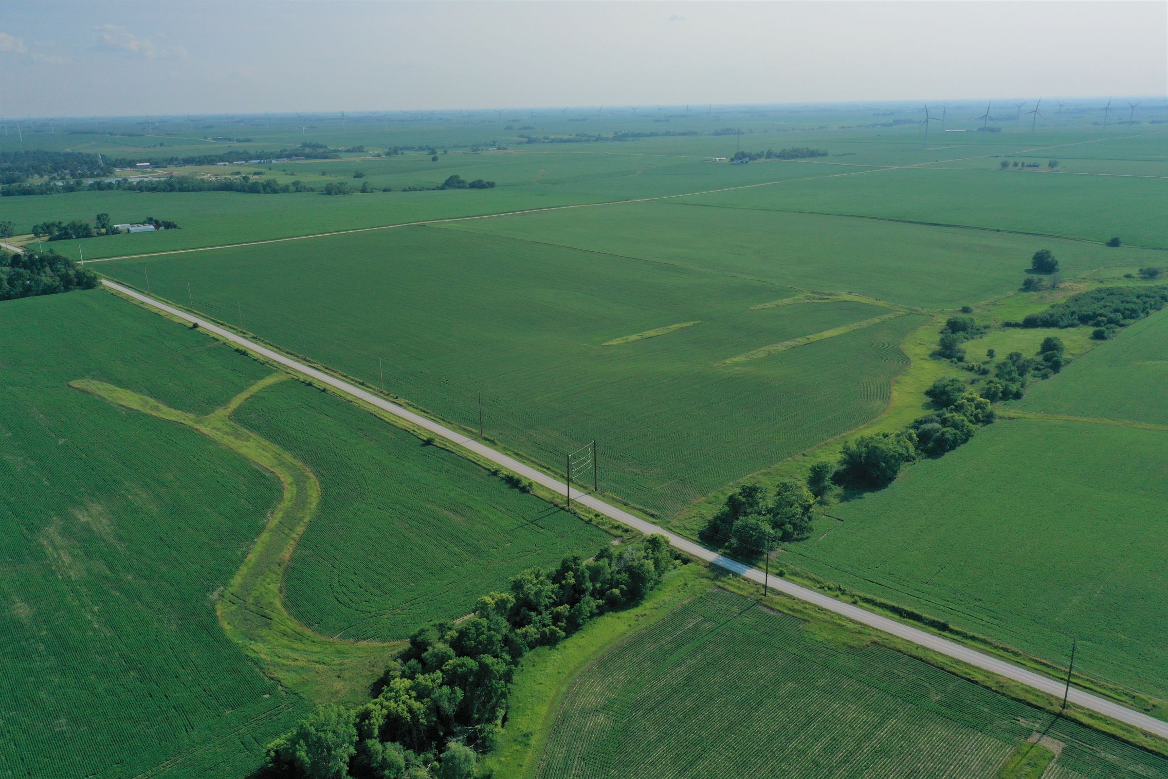story-county-iowa-80-acres-listing-number-15620-0-2021-07-02-150930.JPG