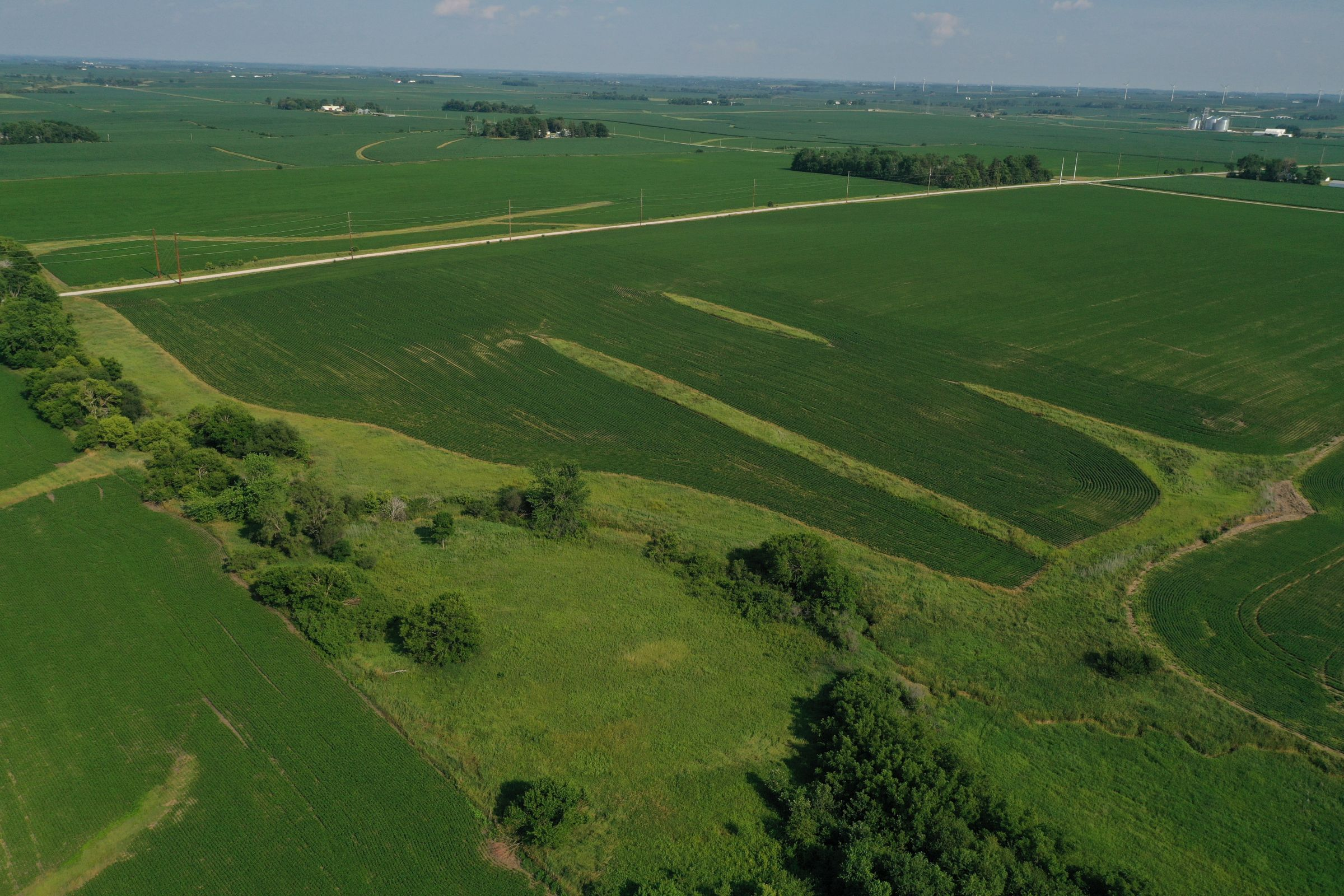 story-county-iowa-80-acres-listing-number-15620-0-2021-07-02-151848.JPG