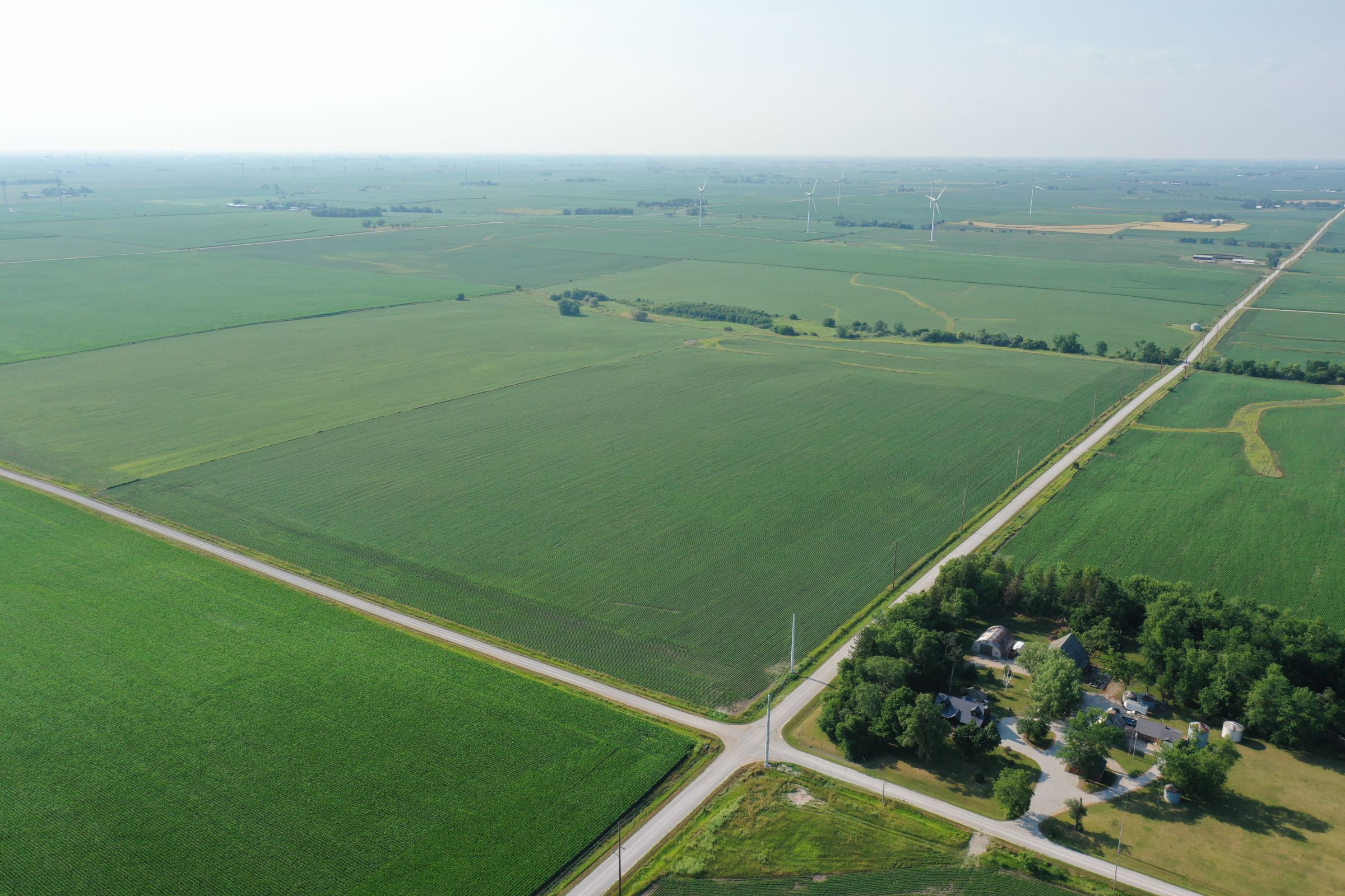 story-county-iowa-80-acres-listing-number-15620-1-2021-07-02-150932.JPG