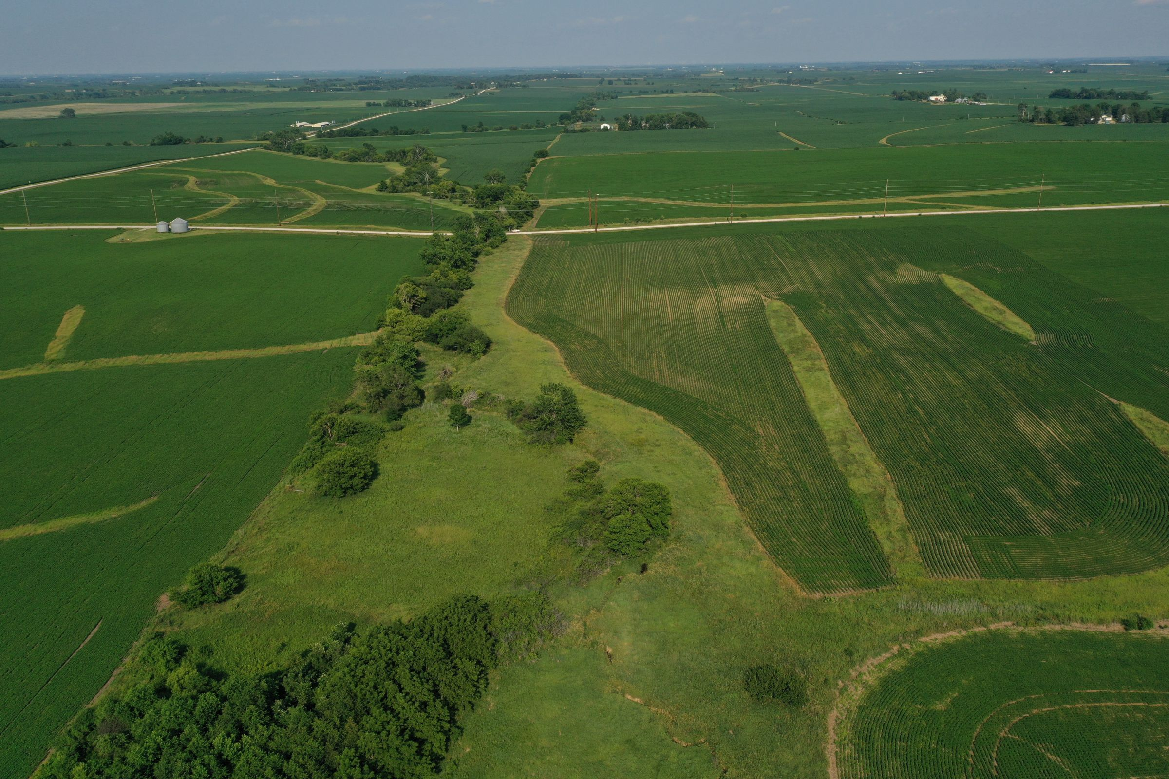 story-county-iowa-80-acres-listing-number-15620-1-2021-07-02-151850.JPG