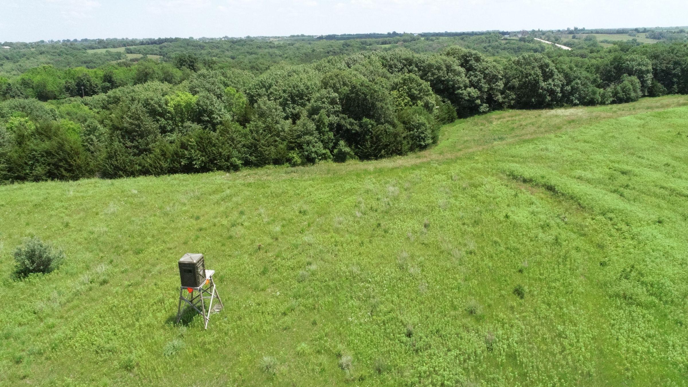 land-warren-county-iowa-29-acres-listing-number-15622-0-2021-07-02-190404.JPG