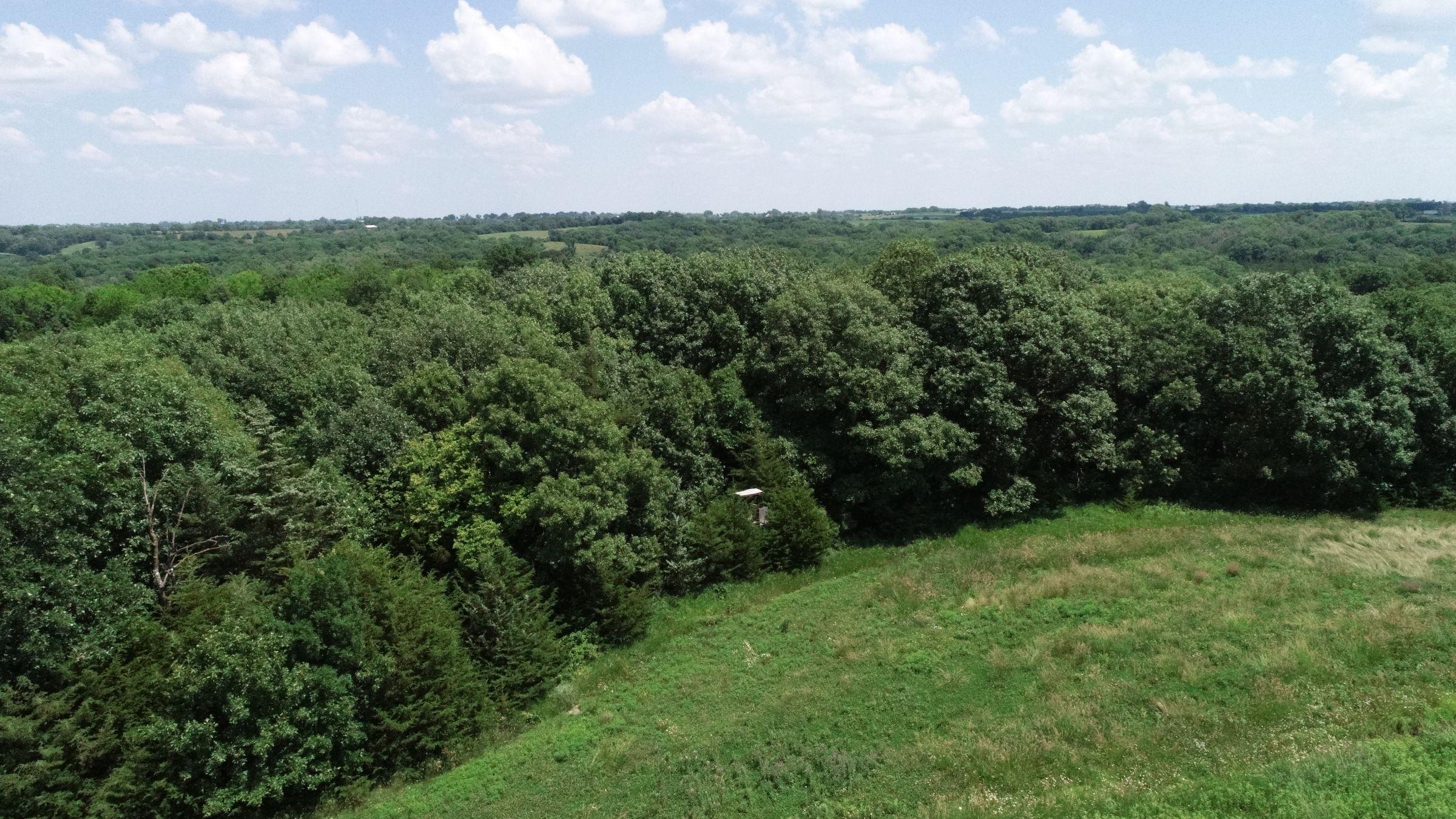 land-warren-county-iowa-29-acres-listing-number-15622-2-2021-07-02-190407.JPG