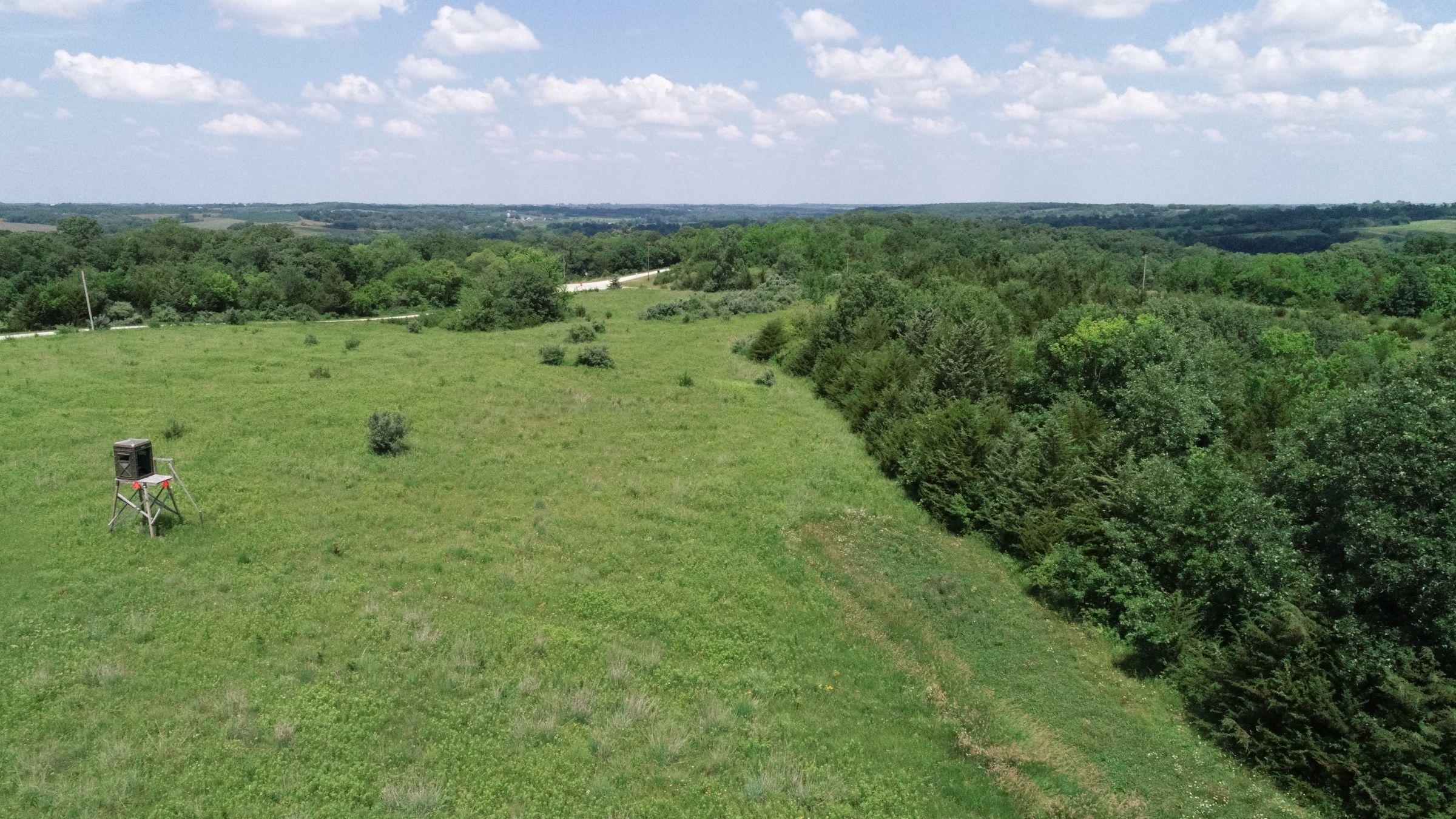 land-warren-county-iowa-29-acres-listing-number-15622-3-2021-07-02-190408.JPG