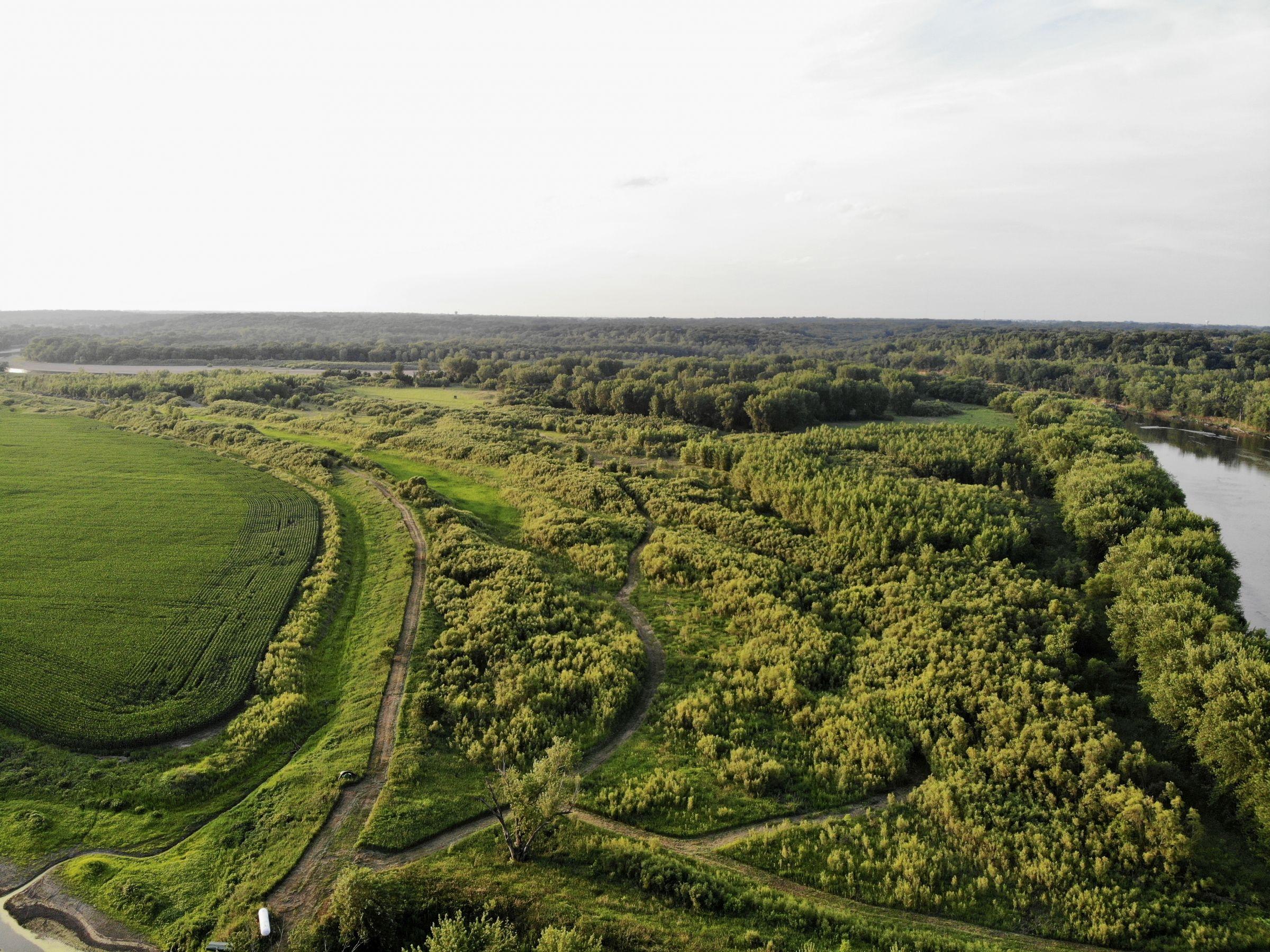 land-warren-county-iowa-158-acres-listing-number-15623-4-2021-07-07-211321.jpg
