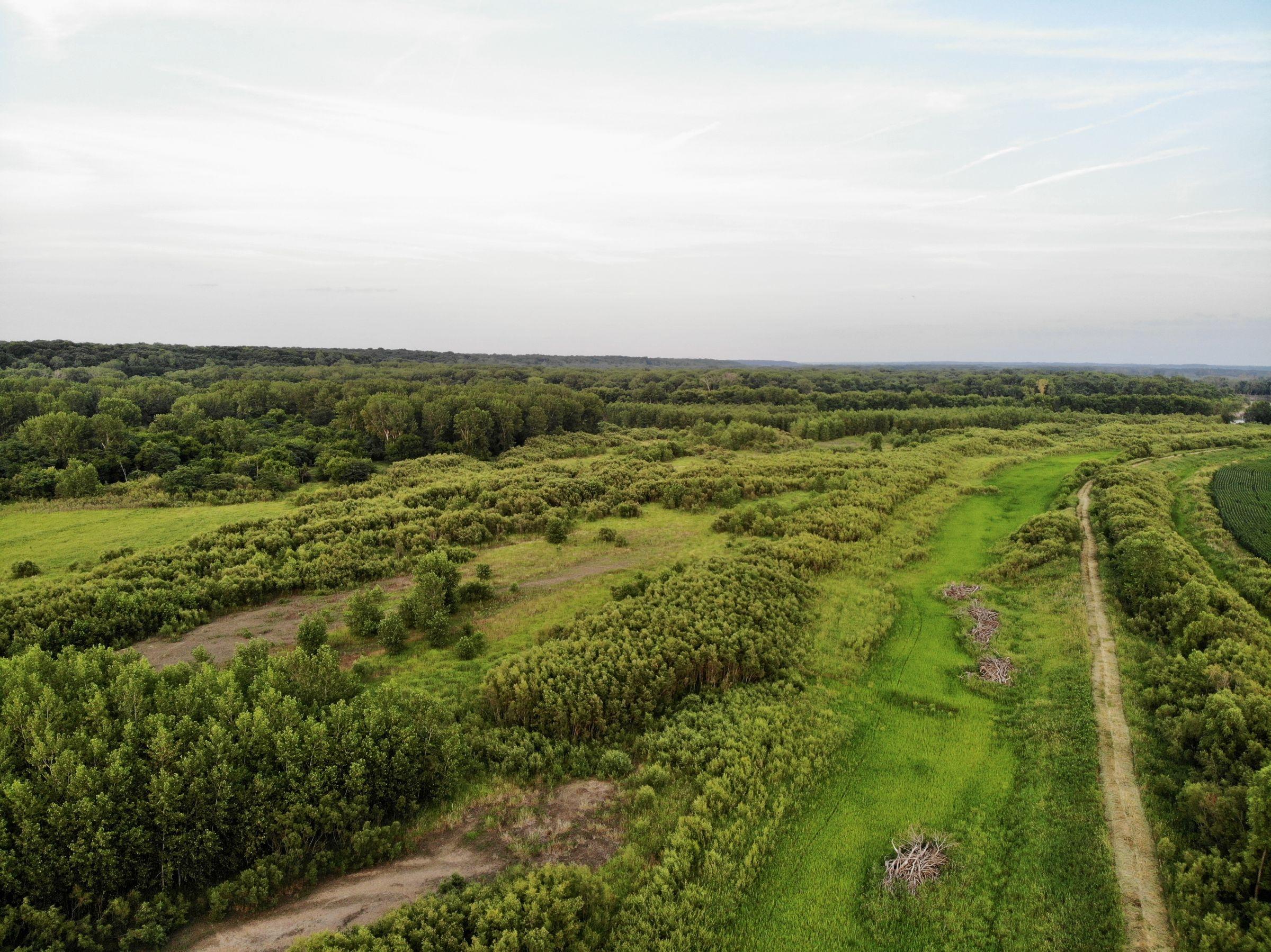 land-warren-county-iowa-158-acres-listing-number-15623-5-2021-07-07-211322.jpg