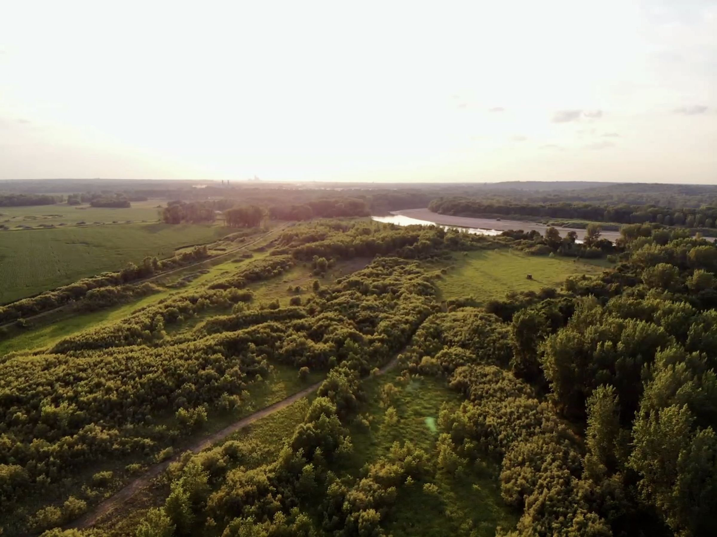 land-warren-county-iowa-158-acres-listing-number-15623-9-2021-07-07-211327.jpg