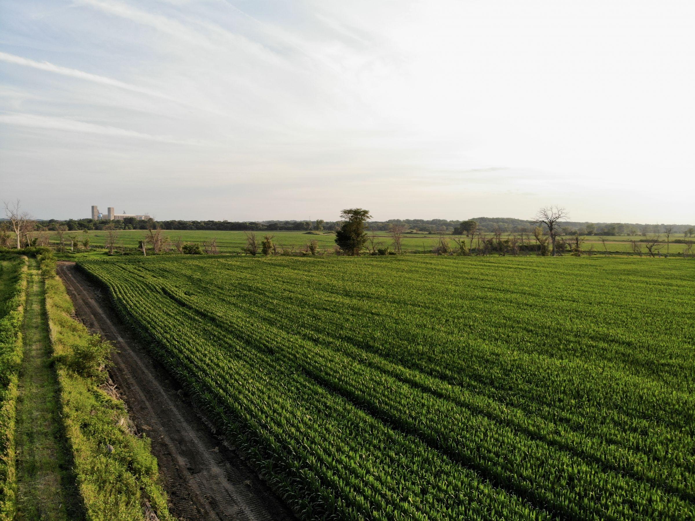 land-polk-county-iowa-202-acres-listing-number-15625-1-2021-07-09-140043.jpg