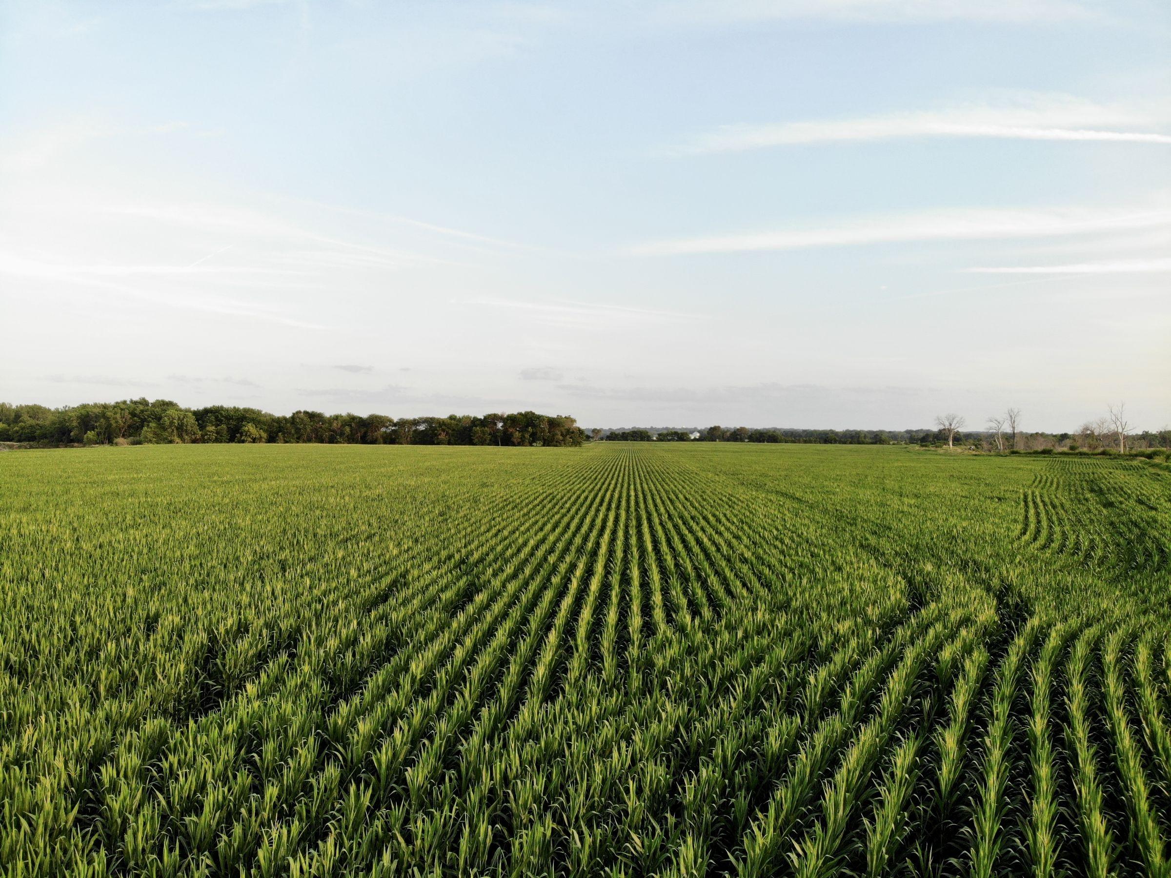land-polk-county-iowa-202-acres-listing-number-15625-1-2021-07-09-140359.jpg