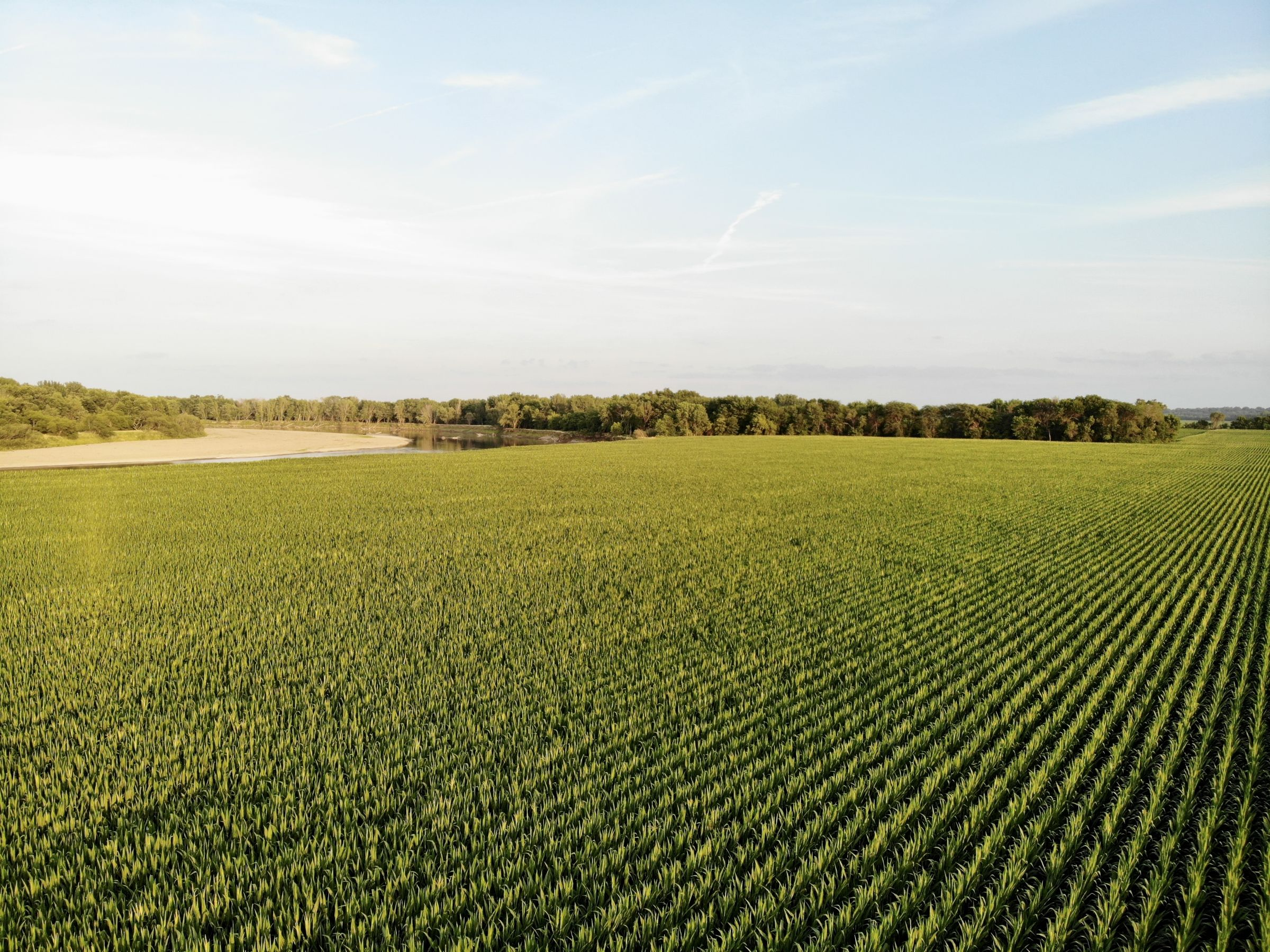 land-polk-county-iowa-202-acres-listing-number-15625-3-2021-07-09-140046.jpg