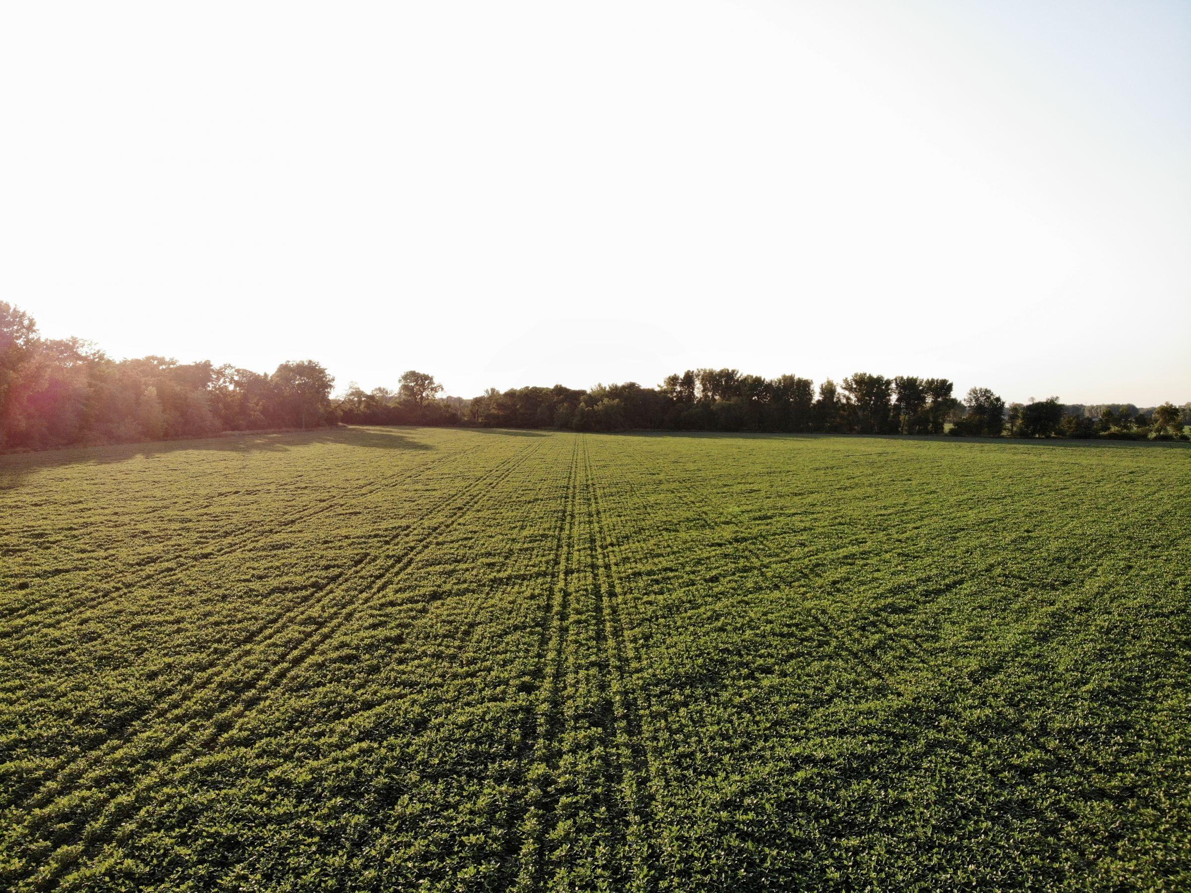 land-polk-county-iowa-89-acres-listing-number-15626-0-2021-07-09-142608.jpg