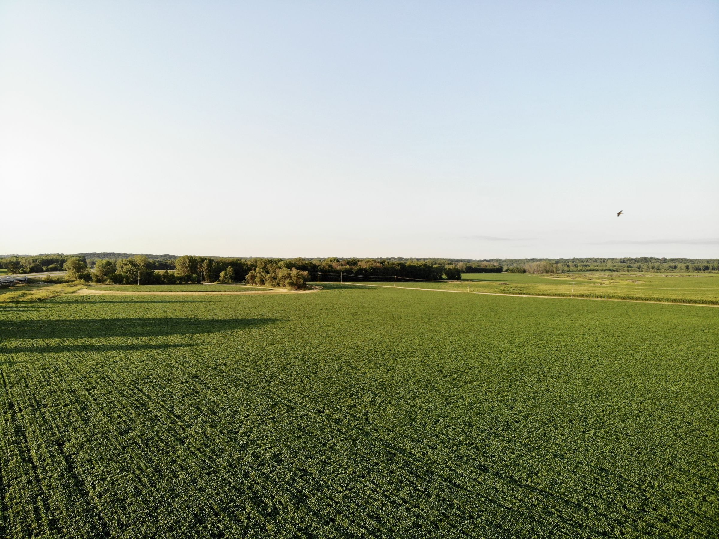 land-polk-county-iowa-89-acres-listing-number-15626-3-2021-07-09-142611.jpg