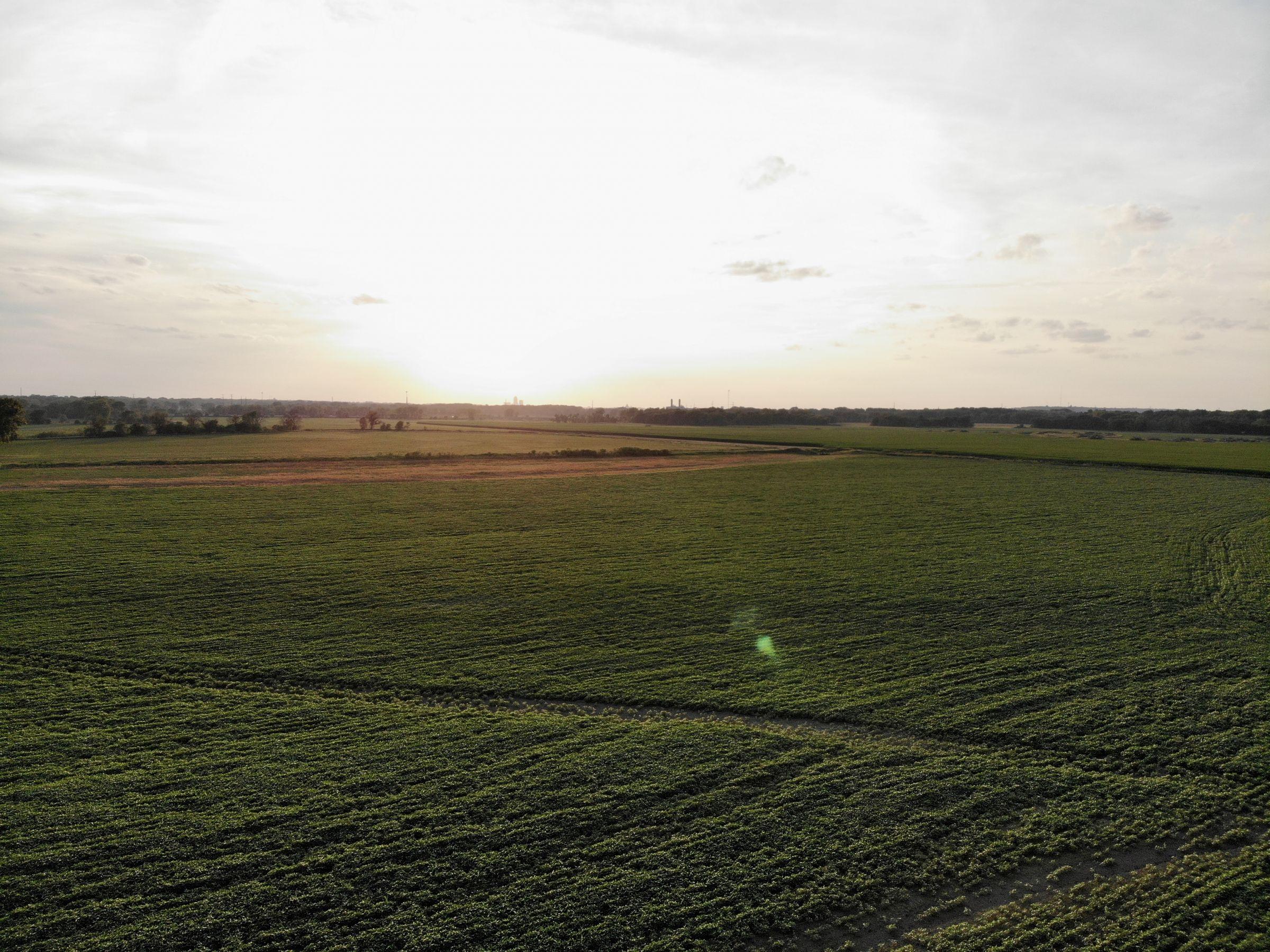 land-polk-county-iowa-242-acres-listing-number-15627-4-2021-07-09-145456.jpg