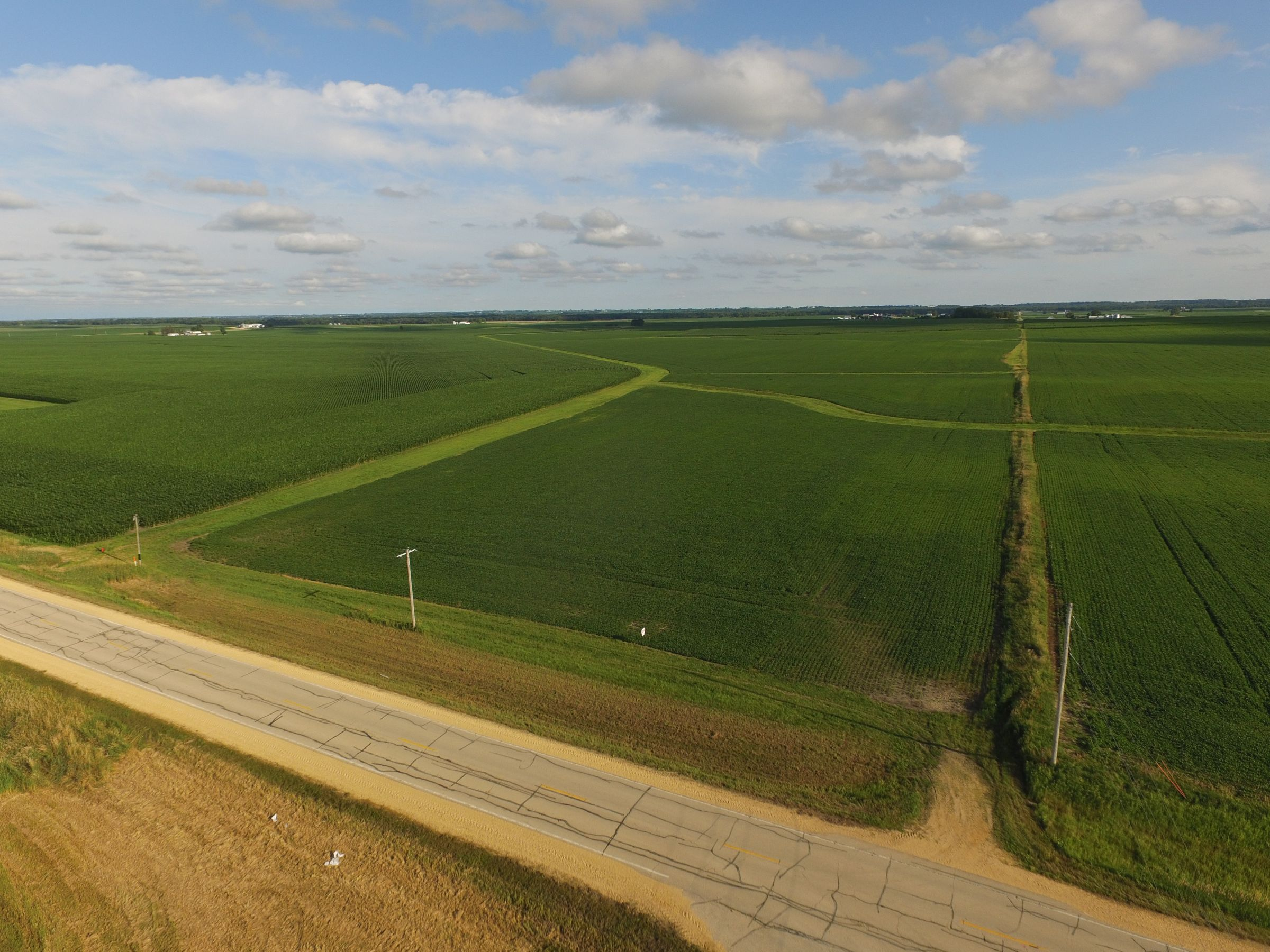 auctions-land-clinton-county-iowa-210-acres-listing-number-15628-0-2021-07-12-143507.JPG