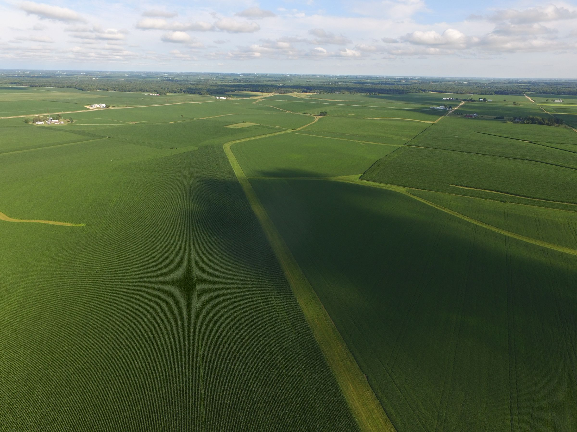 auctions-land-clinton-county-iowa-210-acres-listing-number-15628-1-2021-07-12-143508.JPG
