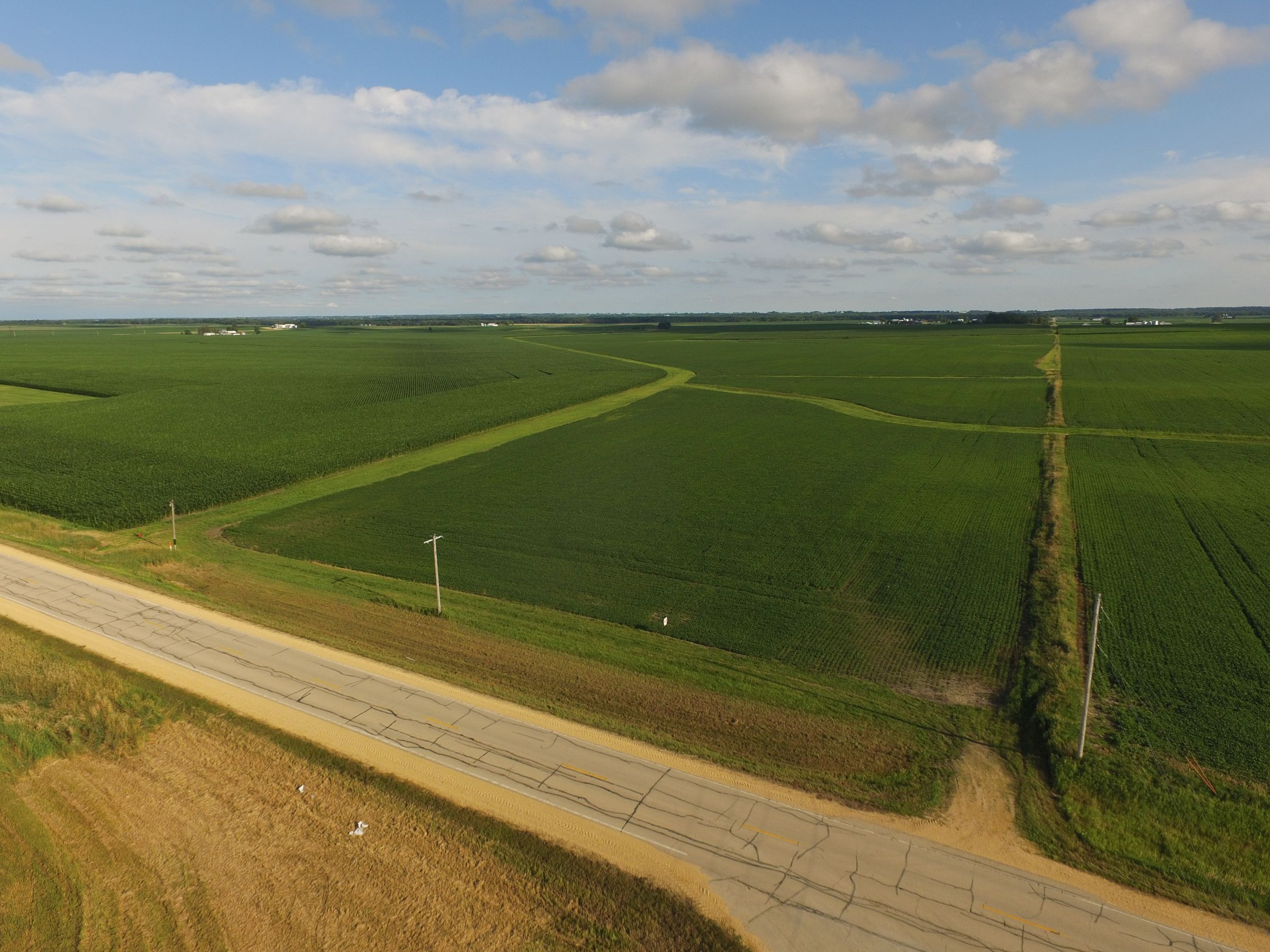 auctions-land-clinton-county-iowa-210-acres-listing-number-15628-2-2021-07-12-143510.JPG