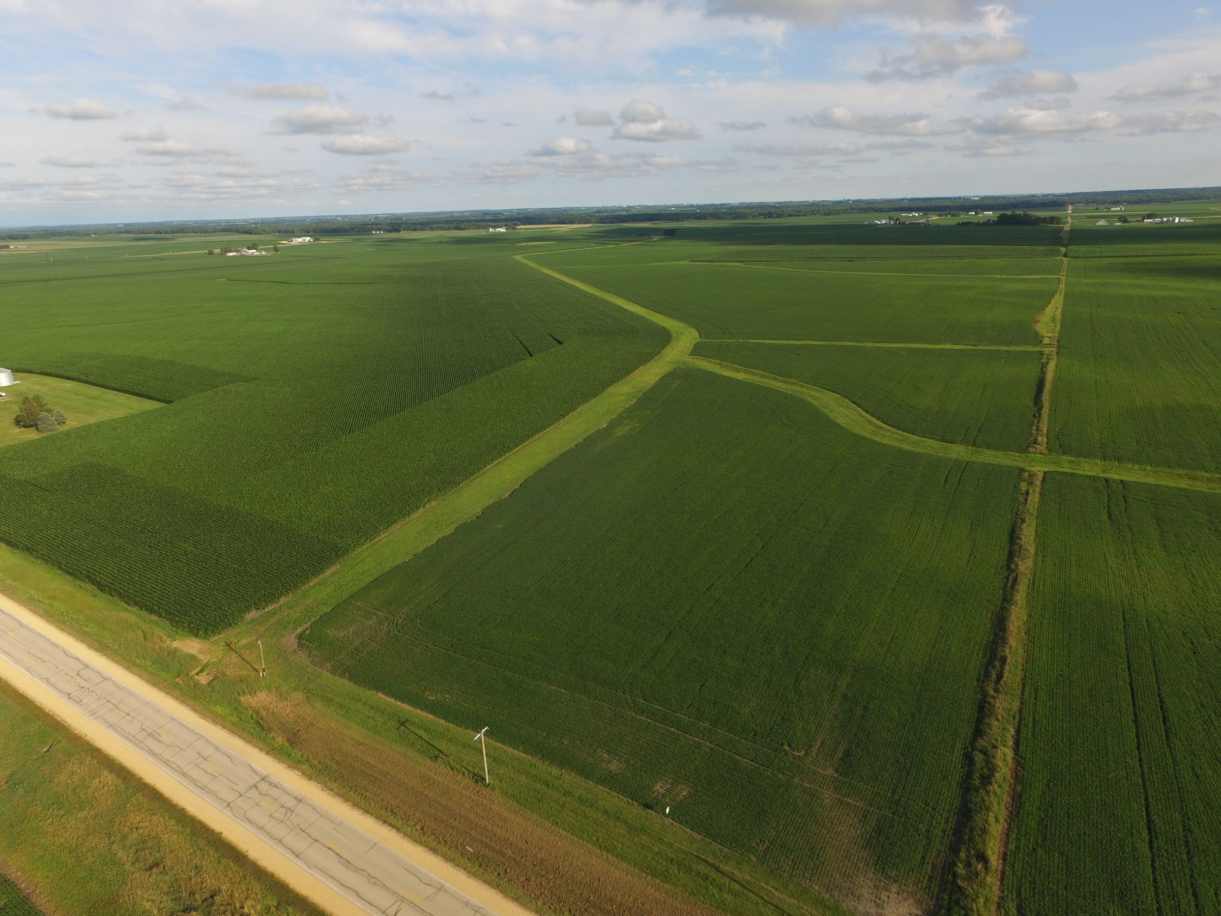 auctions-land-clinton-county-iowa-210-acres-listing-number-15628-4-2021-07-12-143512.JPG