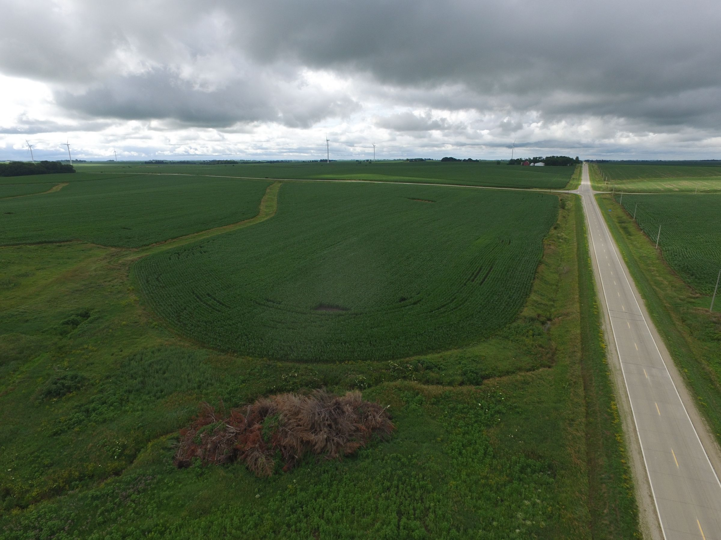 auctions-land-fayette-county-iowa-120-acres-listing-number-15629-0-2021-07-13-190746.JPG