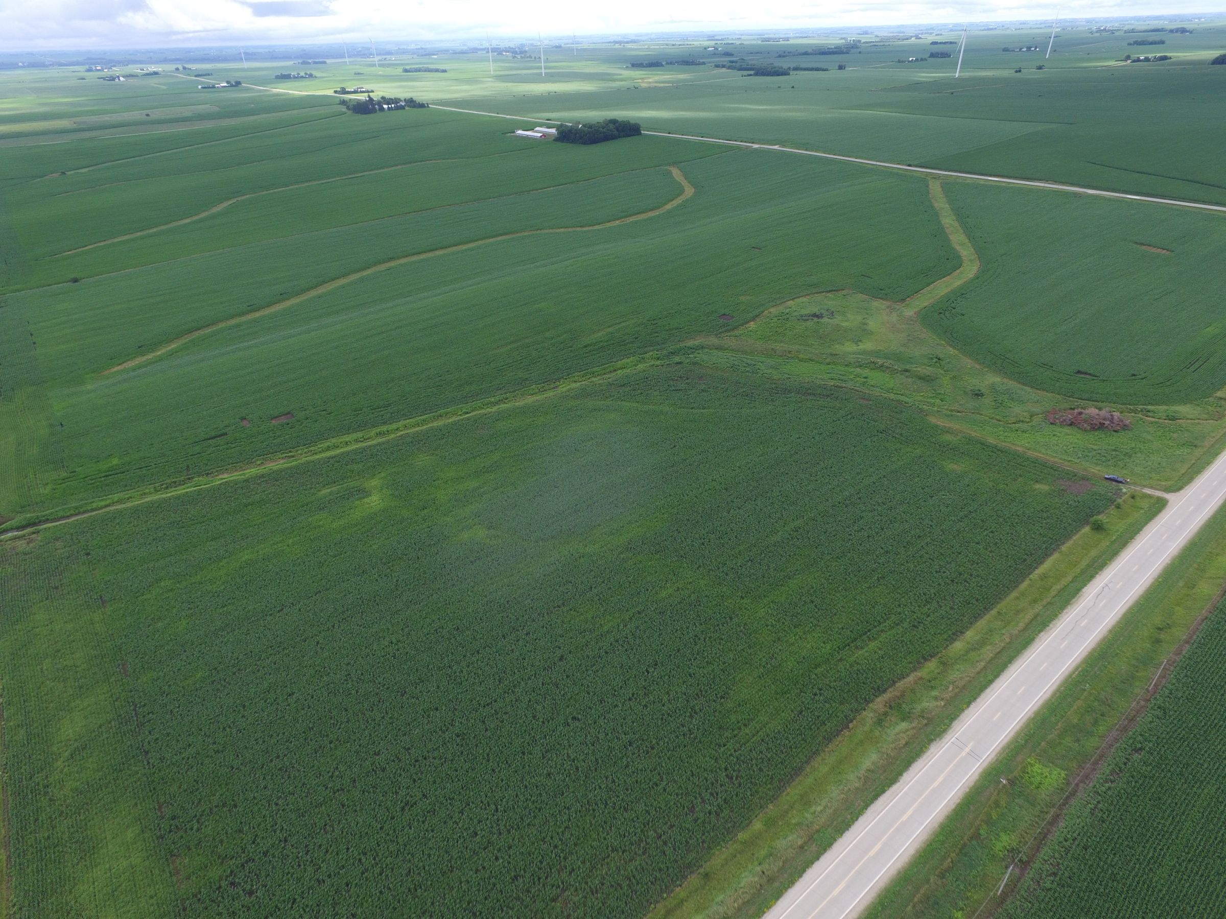auctions-land-fayette-county-iowa-120-acres-listing-number-15629-3-2021-07-13-190750.JPG