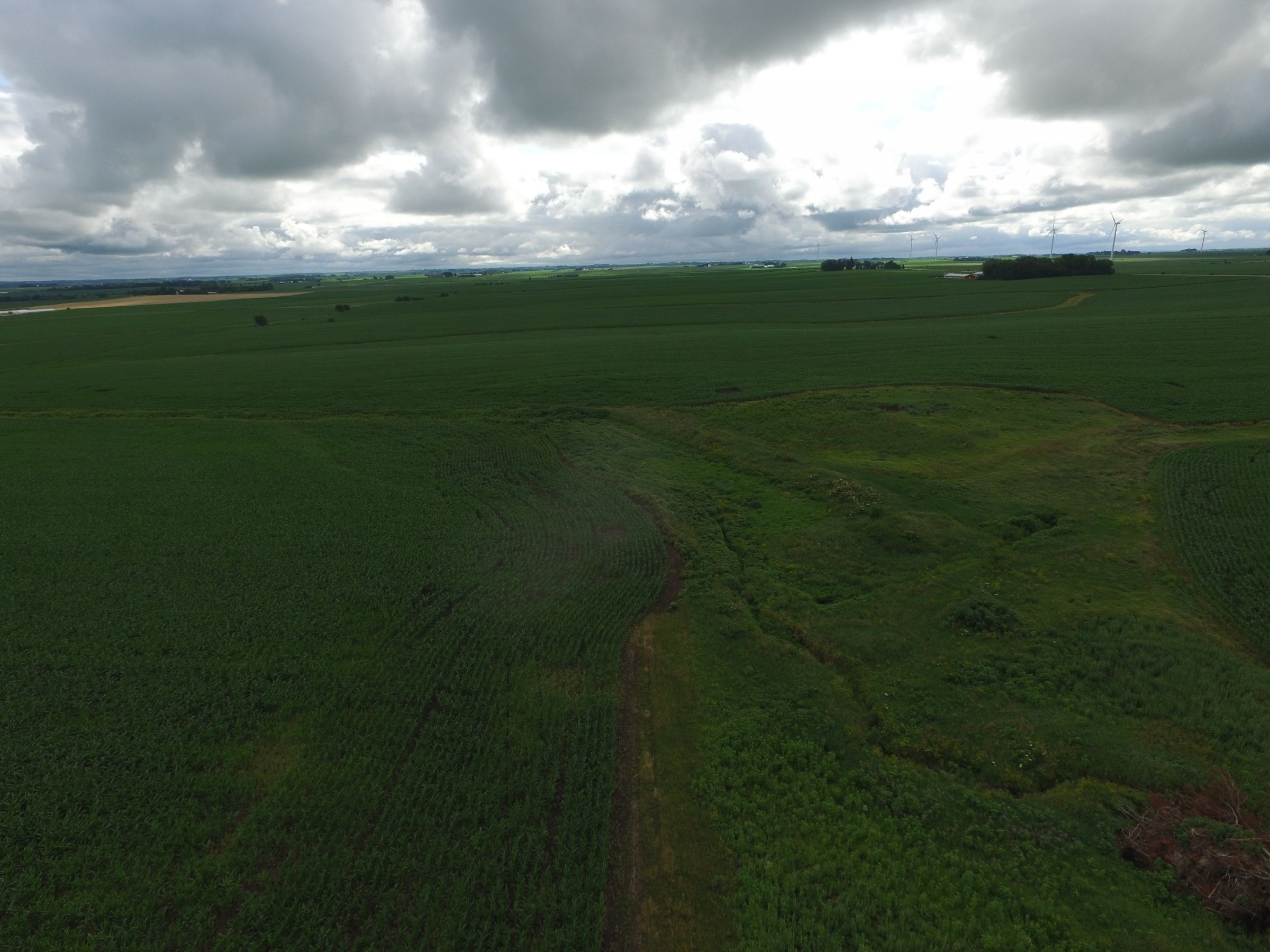 auctions-land-floyd-county-iowa-112-acres-listing-number-15630-15-2021-07-13-192259.JPG