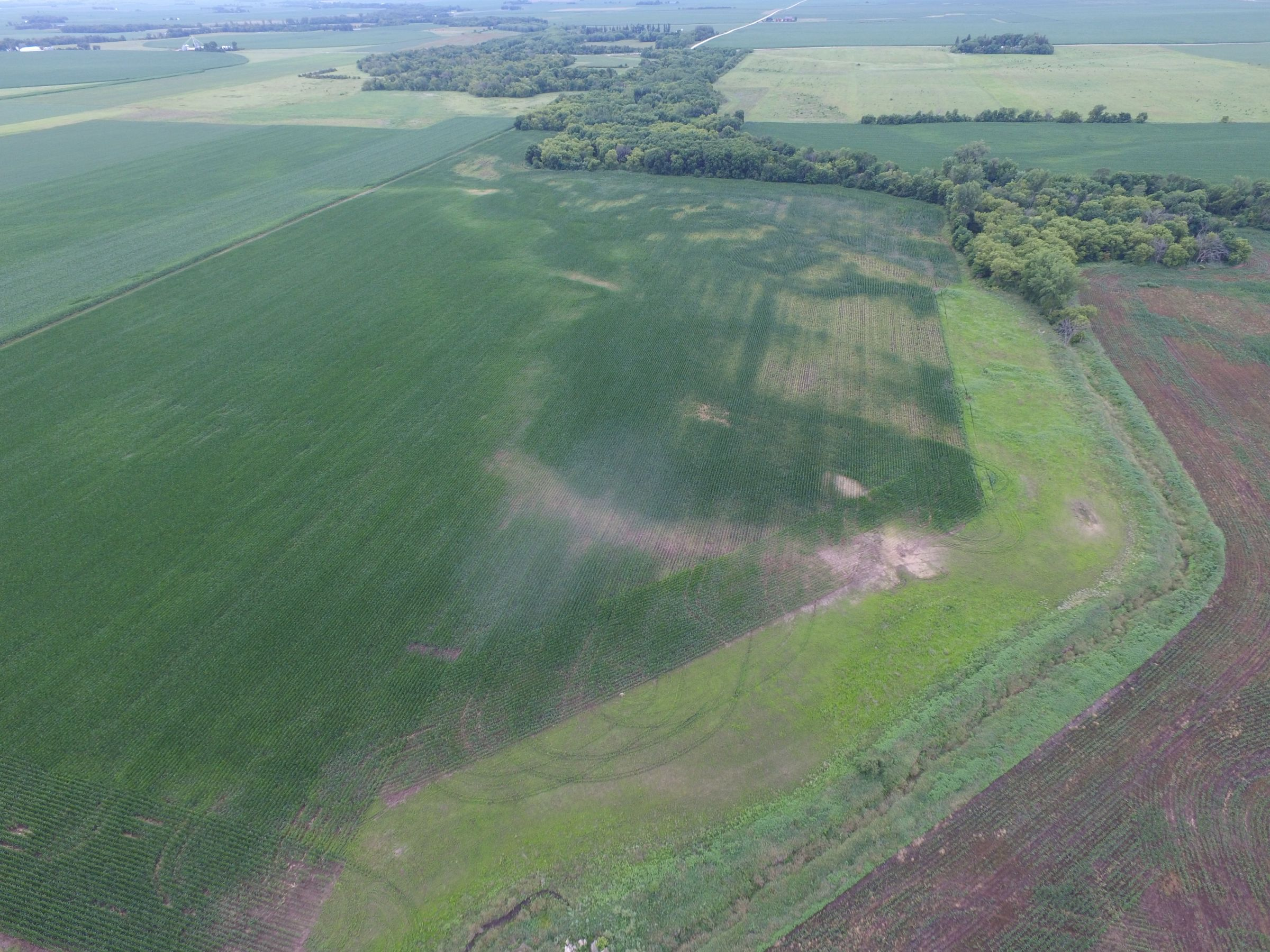 auctions-land-floyd-county-iowa-112-acres-listing-number-15630-6-2021-07-13-192249.JPG