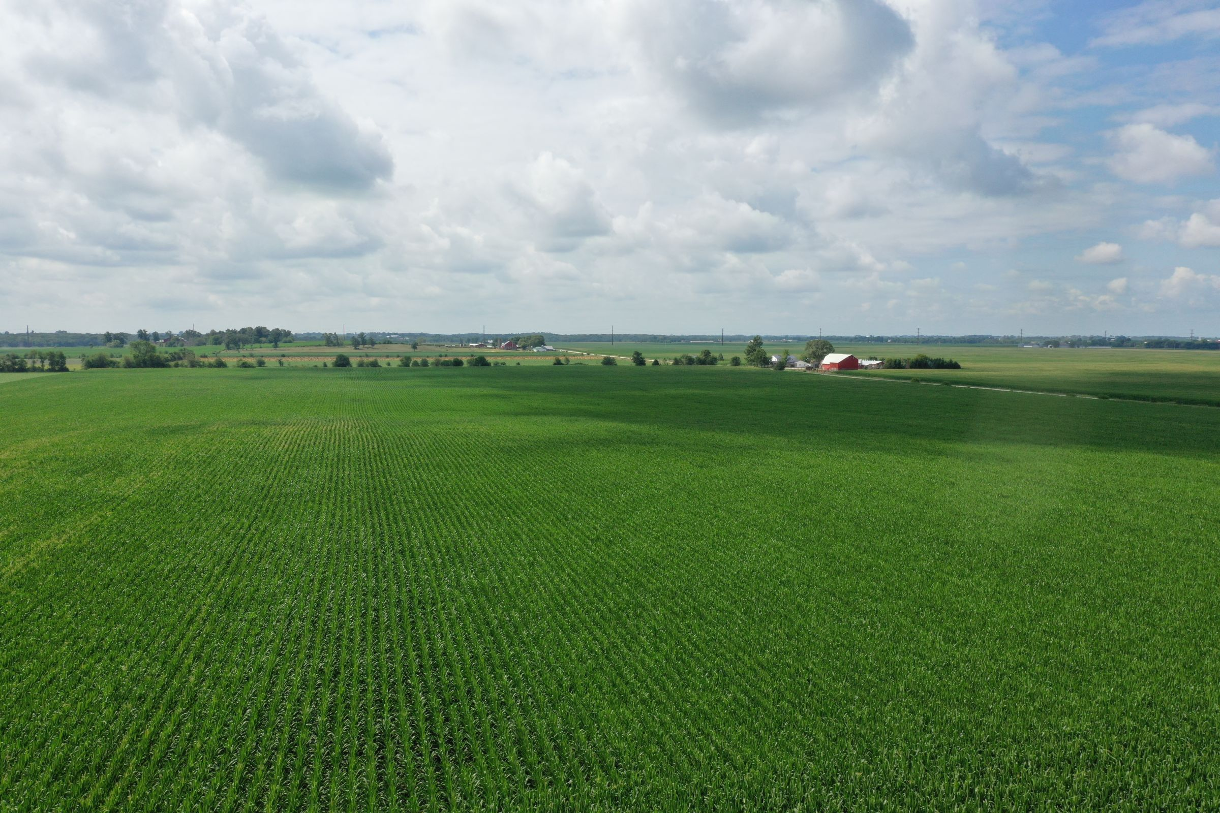 land-buchanan-county-iowa-60-acres-listing-number-15640-0-2021-07-15-183927.JPG