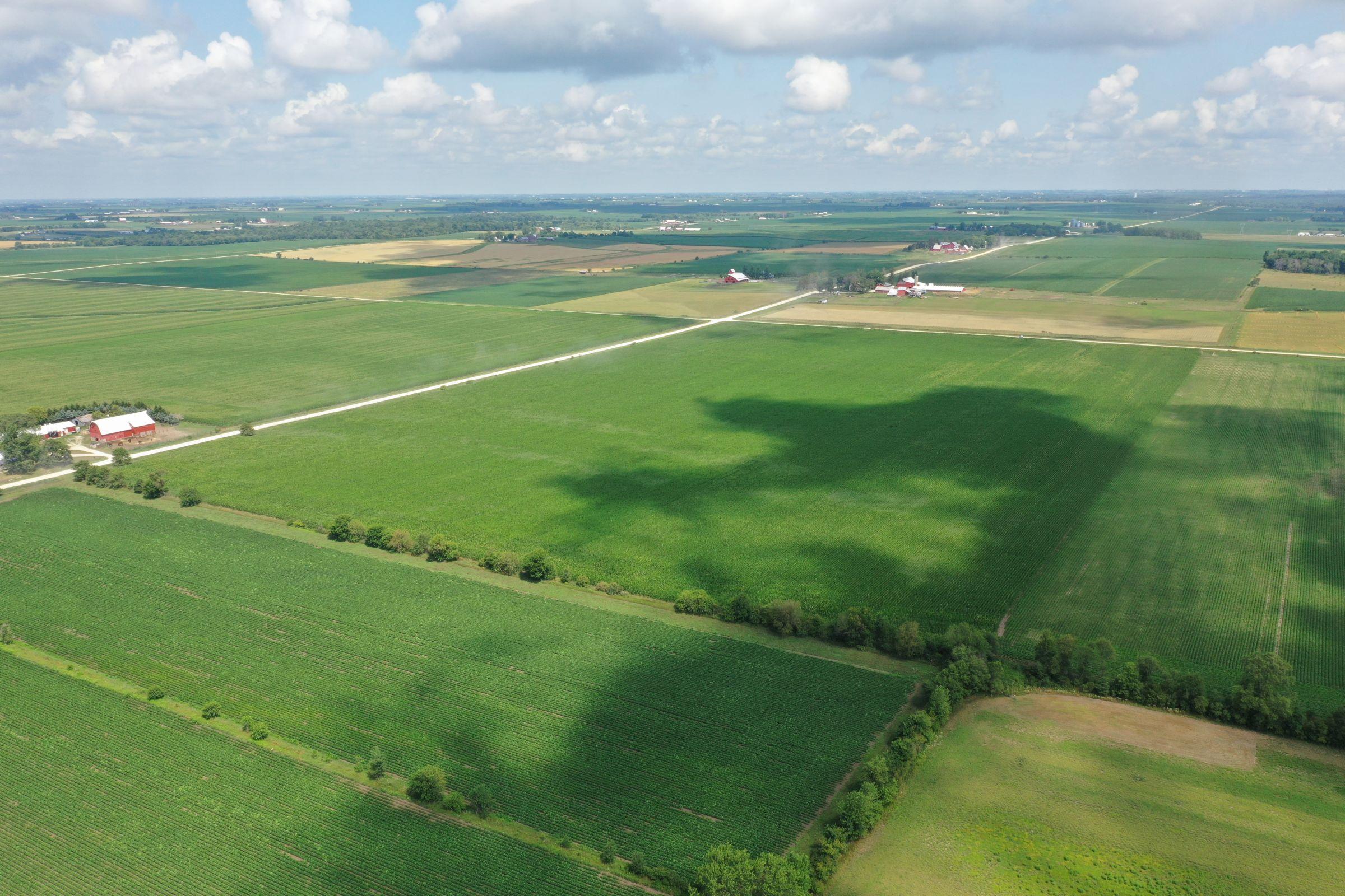 land-buchanan-county-iowa-60-acres-listing-number-15640-2-2021-07-15-183930.JPG