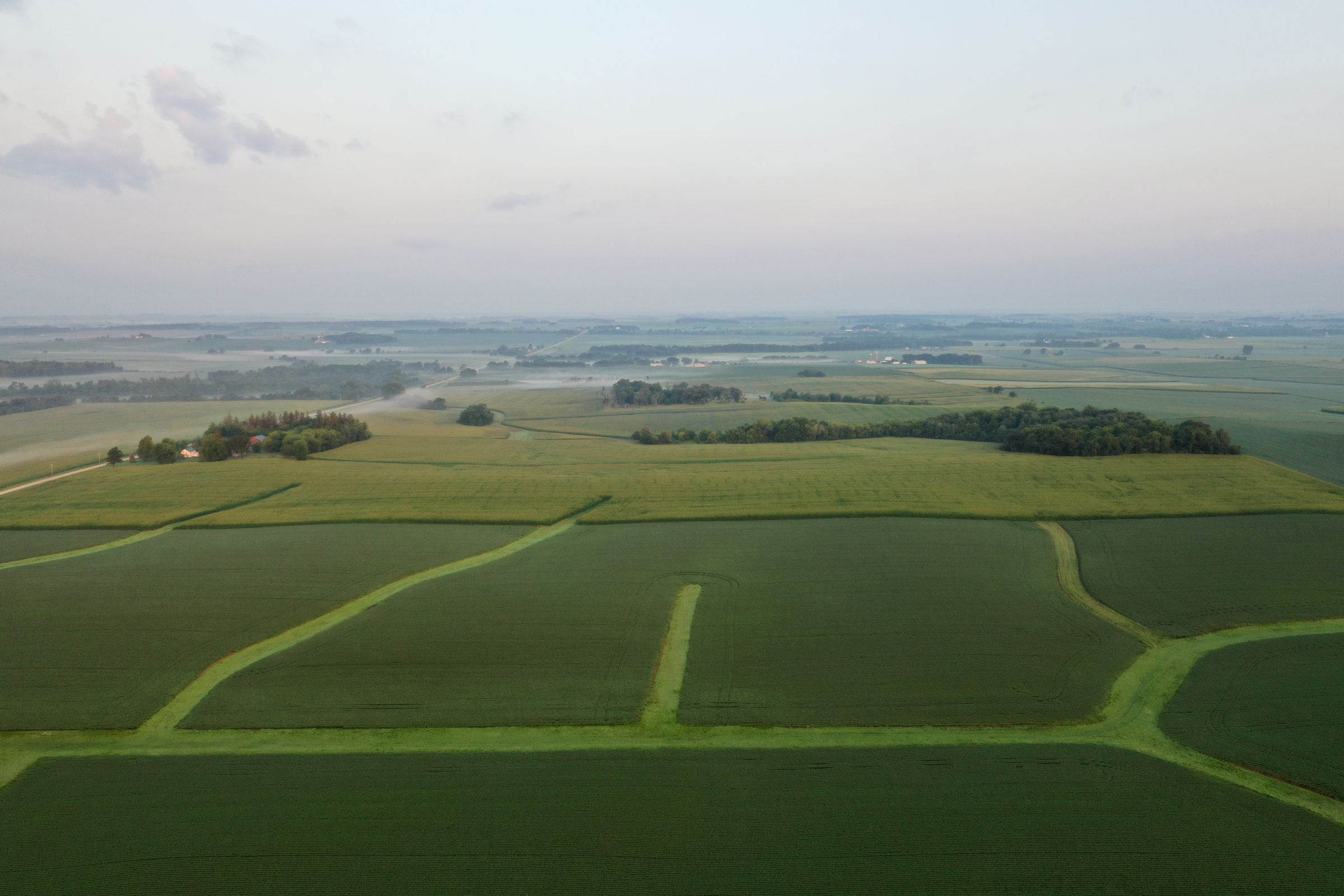 auctions-land-fayette-county-iowa-233-acres-listing-number-15645-1-2021-07-21-143929.JPG