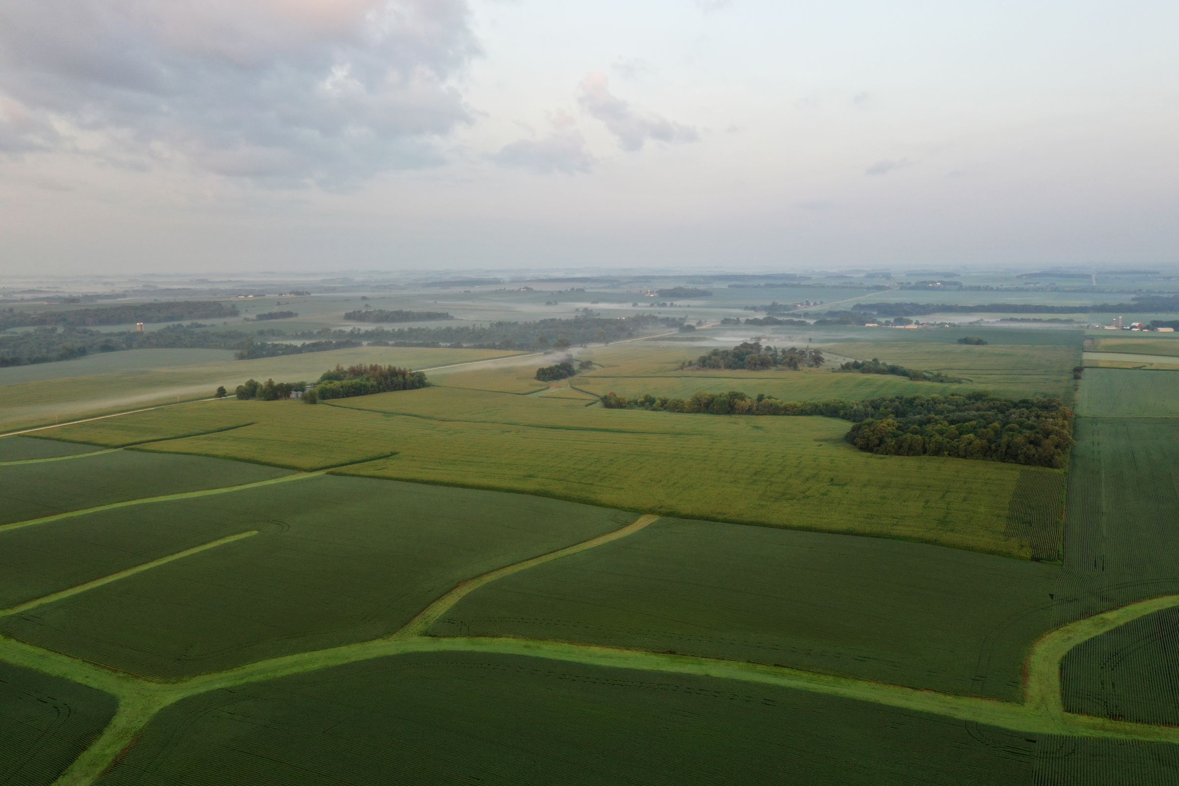 auctions-land-fayette-county-iowa-233-acres-listing-number-15645-2-2021-07-21-143931.JPG