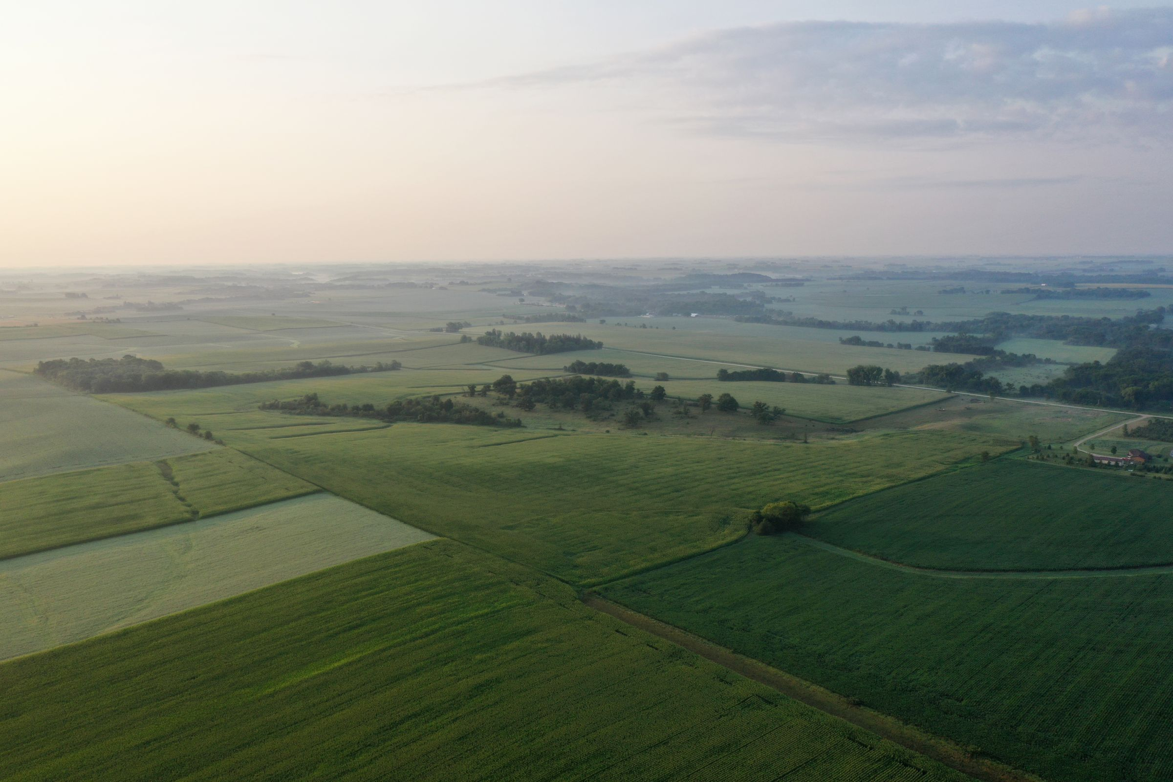 auctions-land-fayette-county-iowa-233-acres-listing-number-15645-3-2021-07-21-143932.JPG