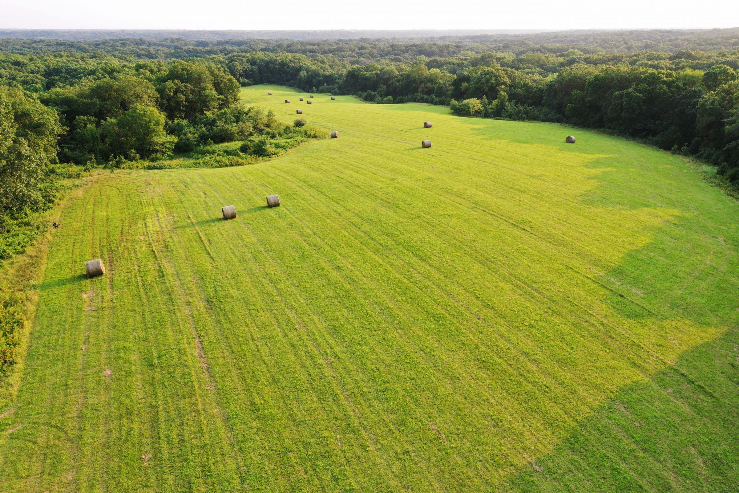 land-lee-county-iowa-340-acres-listing-number-15649-1-2021-07-21-185535.jpg