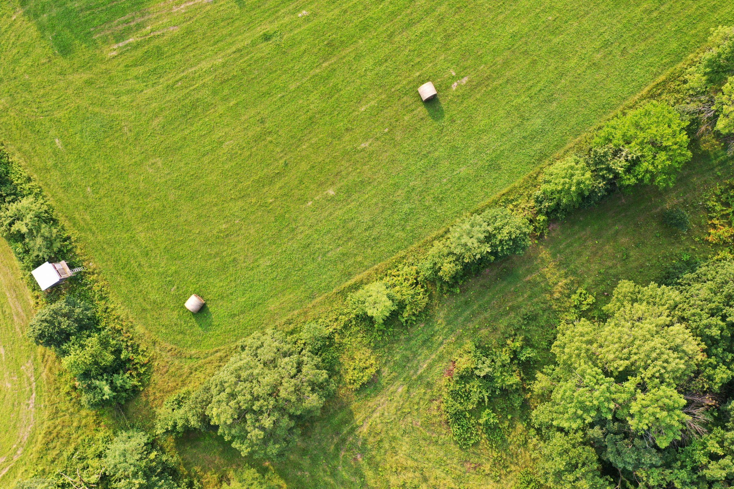 land-lee-county-iowa-340-acres-listing-number-15649-1-2021-07-21-185905.jpg