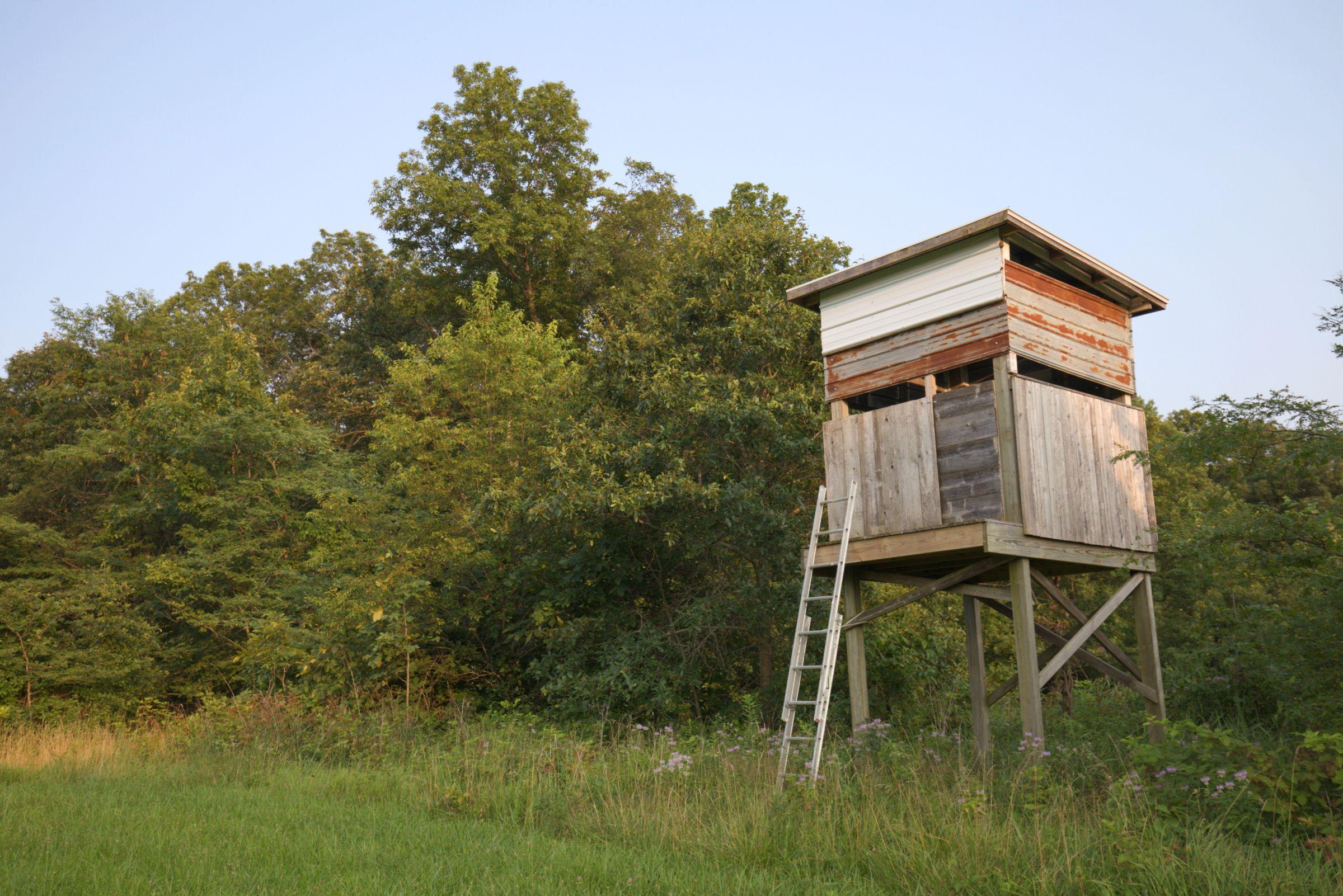 land-lee-county-iowa-340-acres-listing-number-15649-2-2021-07-21-184745.jpg