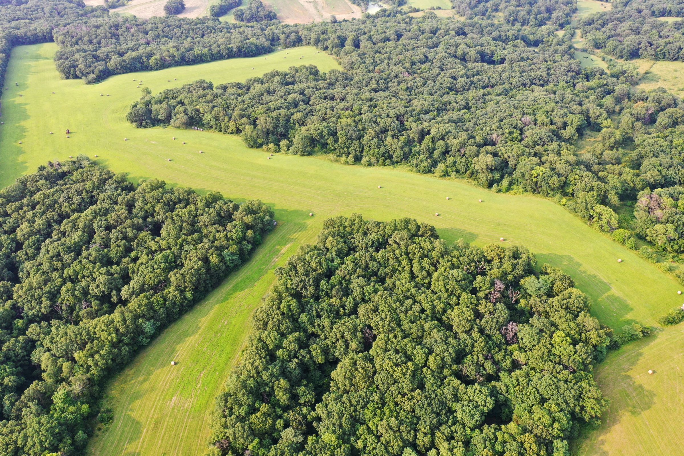 land-lee-county-iowa-340-acres-listing-number-15649-2-2021-07-21-185907.jpg