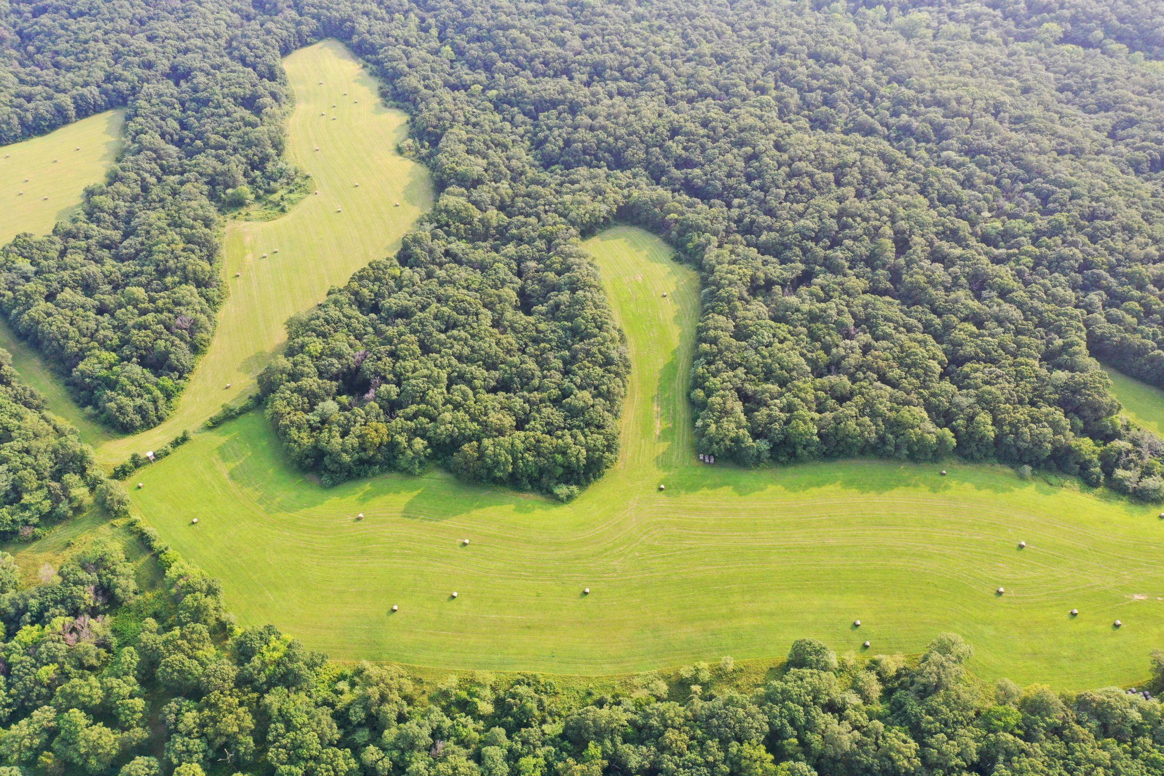 land-lee-county-iowa-340-acres-listing-number-15649-3-2021-07-21-185909.jpg