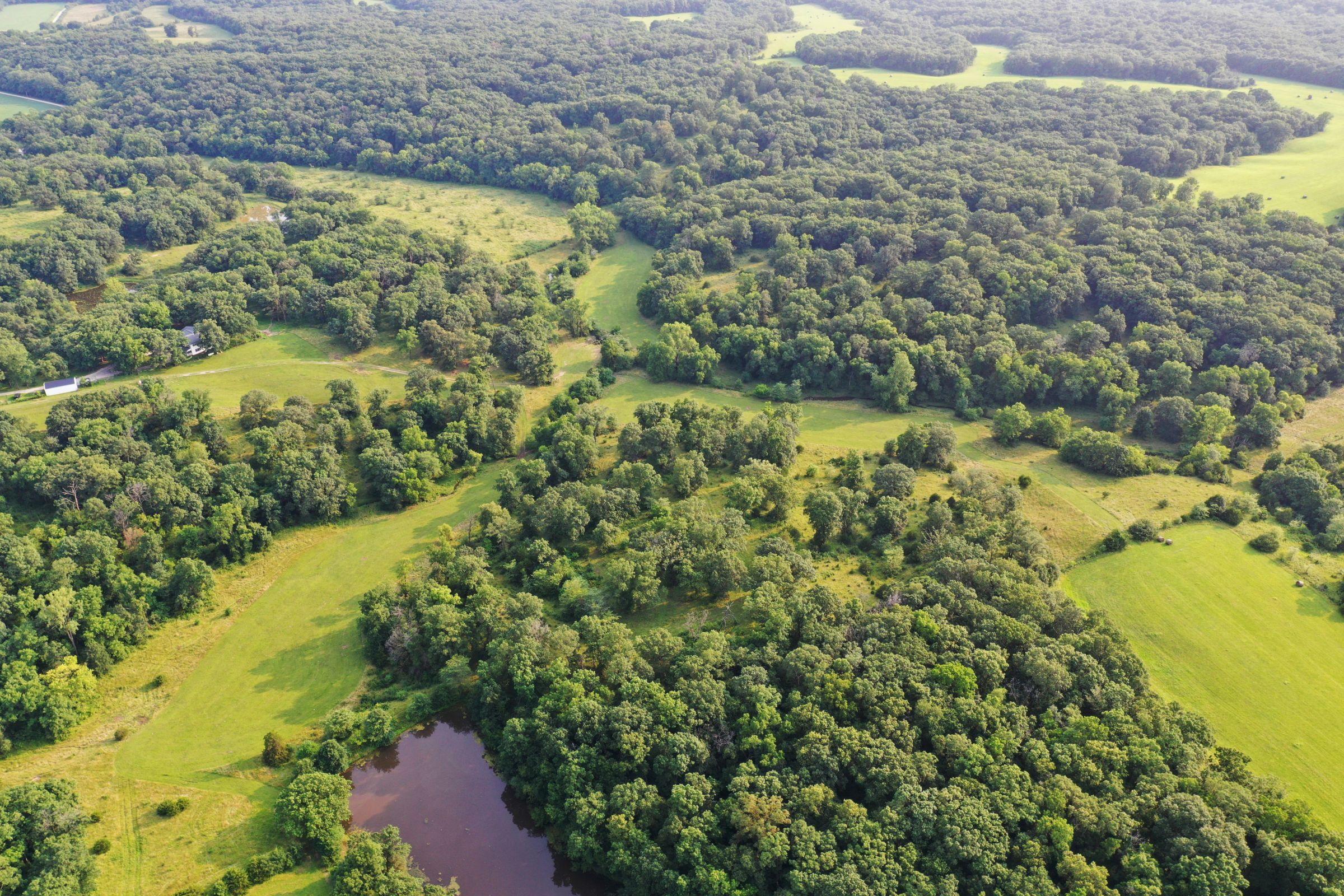 land-lee-county-iowa-340-acres-listing-number-15649-4-2021-07-21-185911.jpg