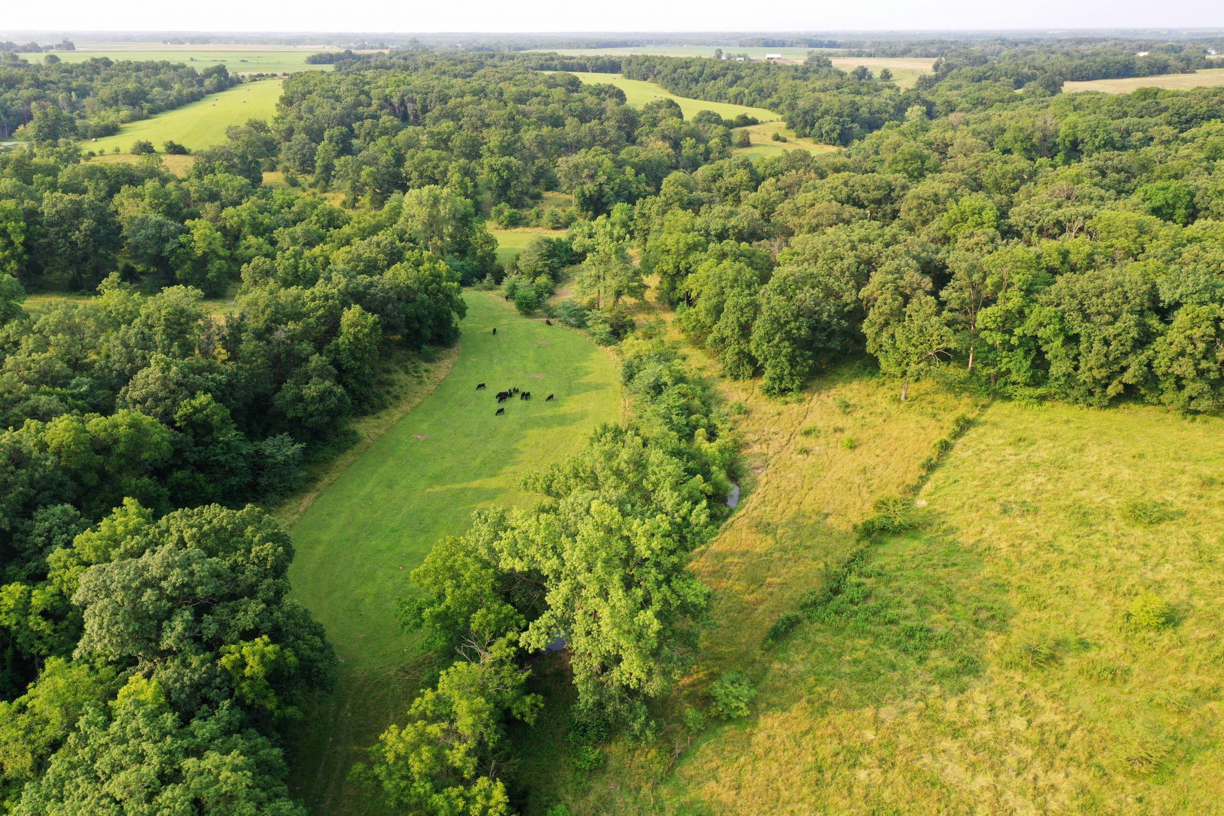 land-lee-county-iowa-340-acres-listing-number-15649-9-2021-07-21-185549.jpg