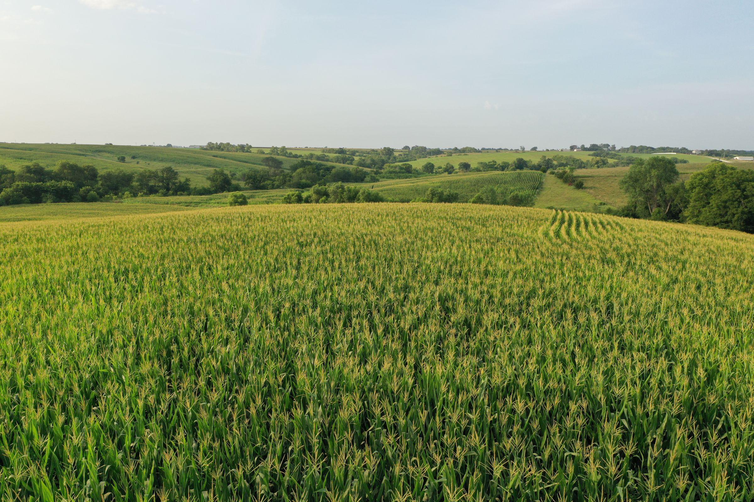 Clarke County Iowa Farmland For Sale