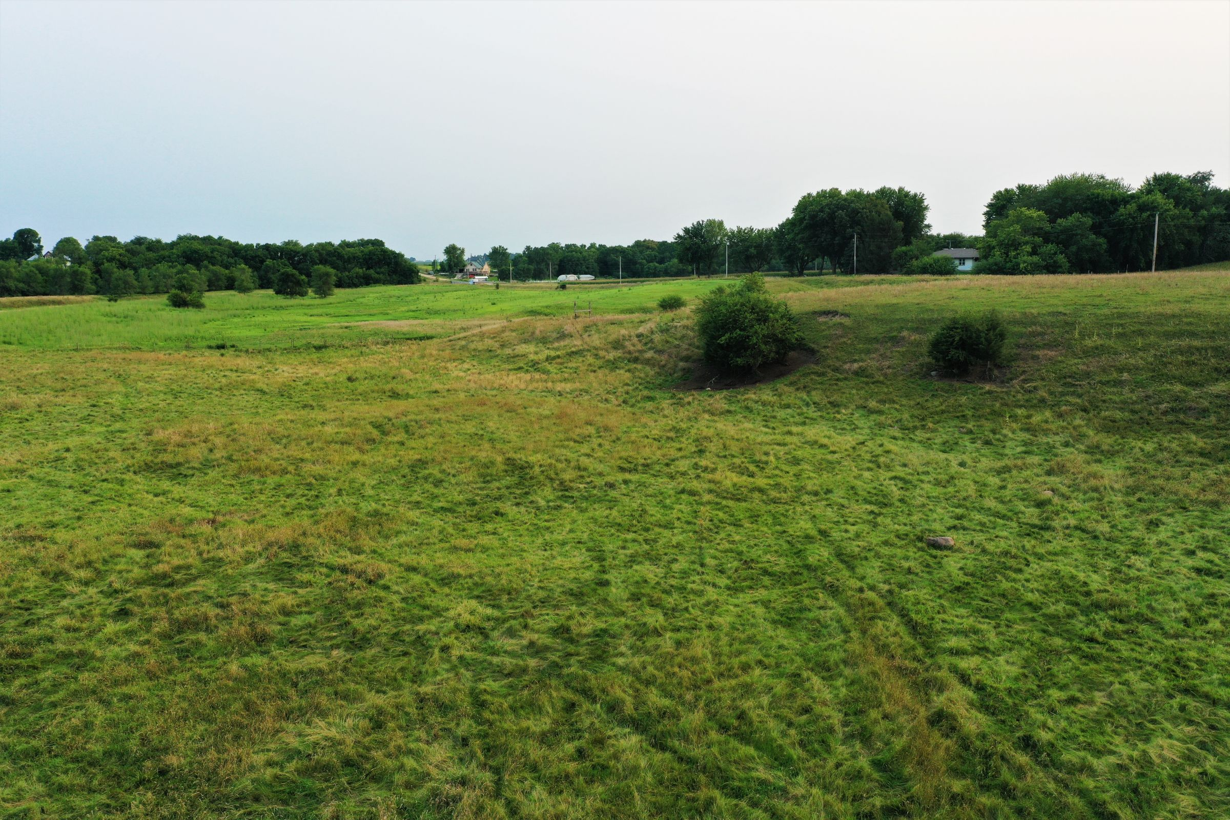 land-sac-county-iowa-23-acres-listing-number-15671-2-2021-08-11-170031.jpg