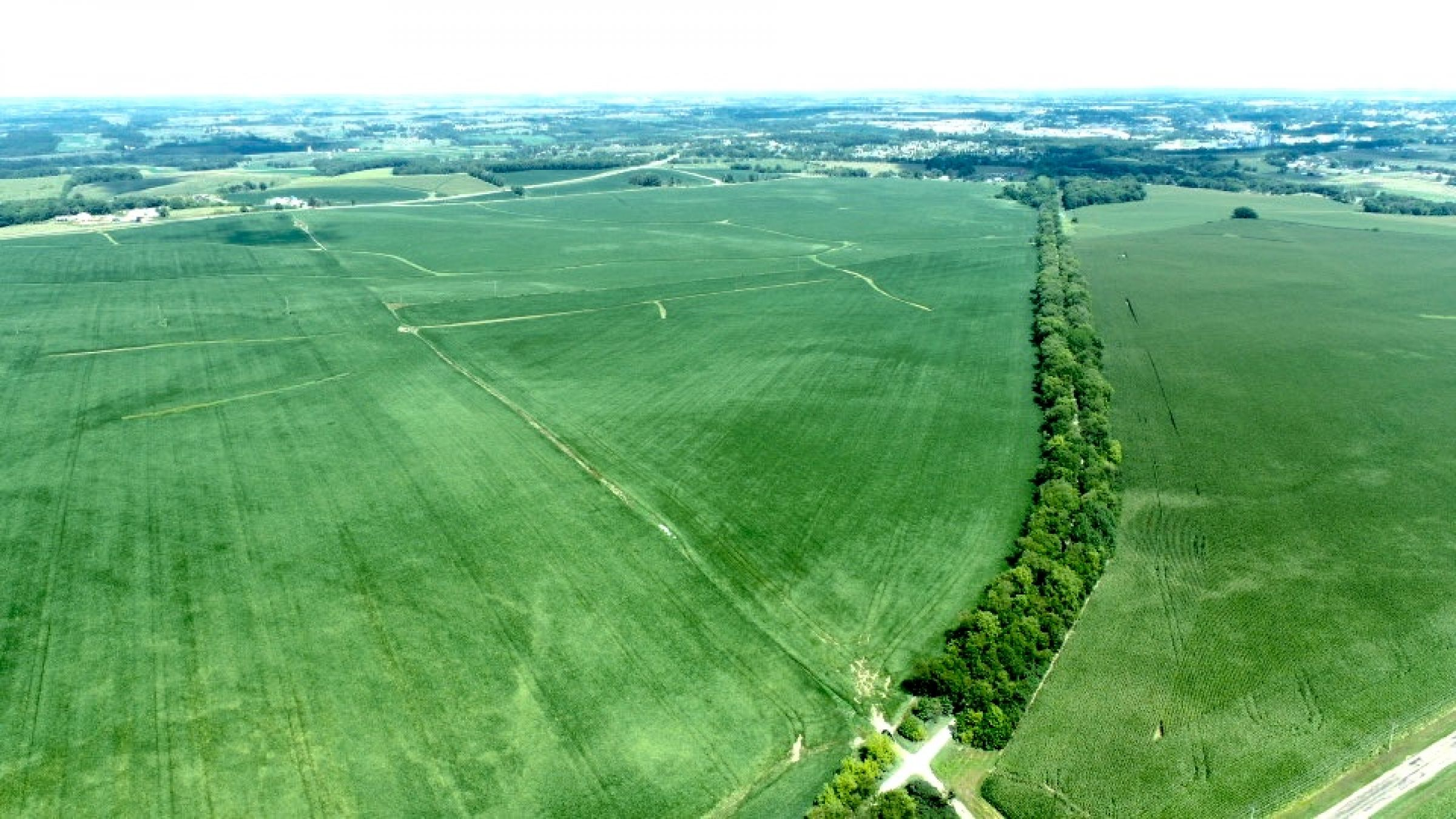 land-green-county-wisconsin-80-acres-listing-number-15692-0-2021-08-19-205610.jpg