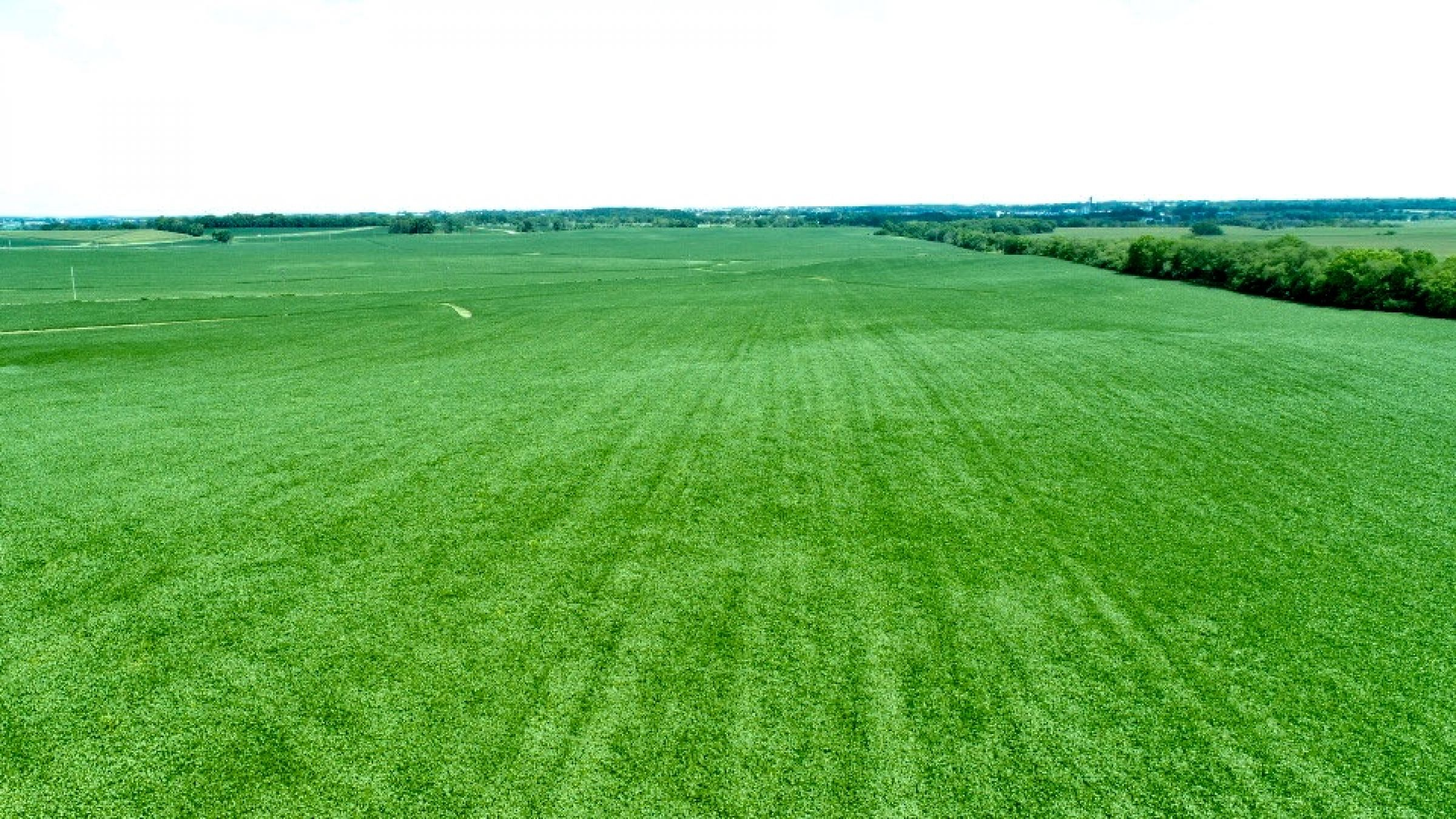 land-green-county-wisconsin-80-acres-listing-number-15692-1-2021-08-19-205611.jpg