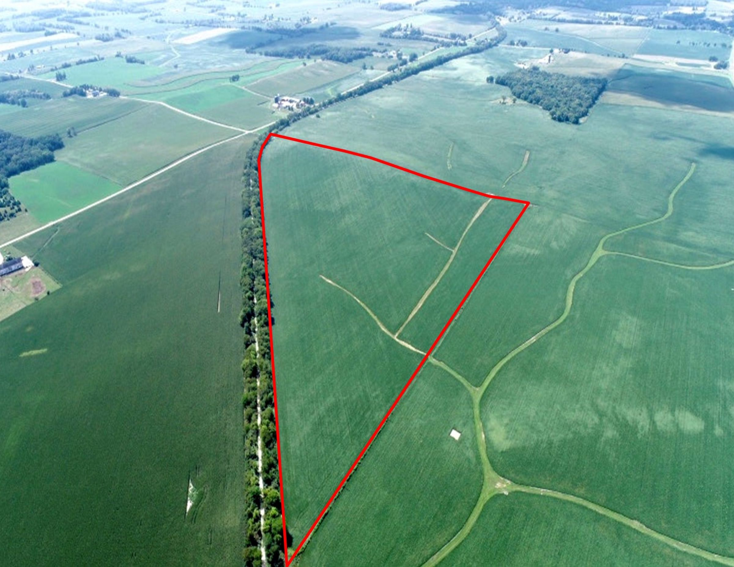 land-green-county-wisconsin-80-acres-listing-number-15692-13-2021-08-19-205615.jpg