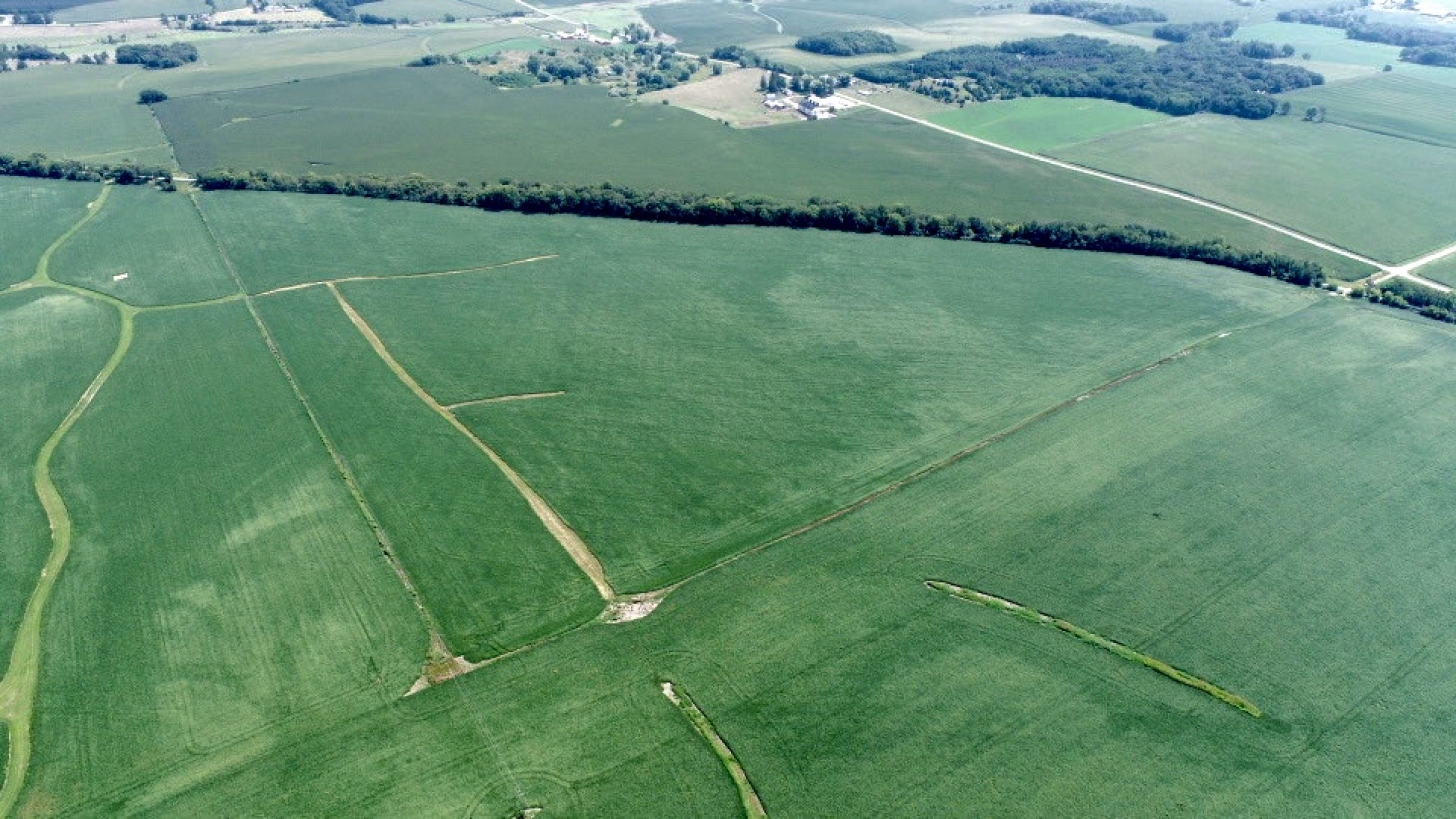 land-green-county-wisconsin-80-acres-listing-number-15692-9-2021-08-19-205614.jpg