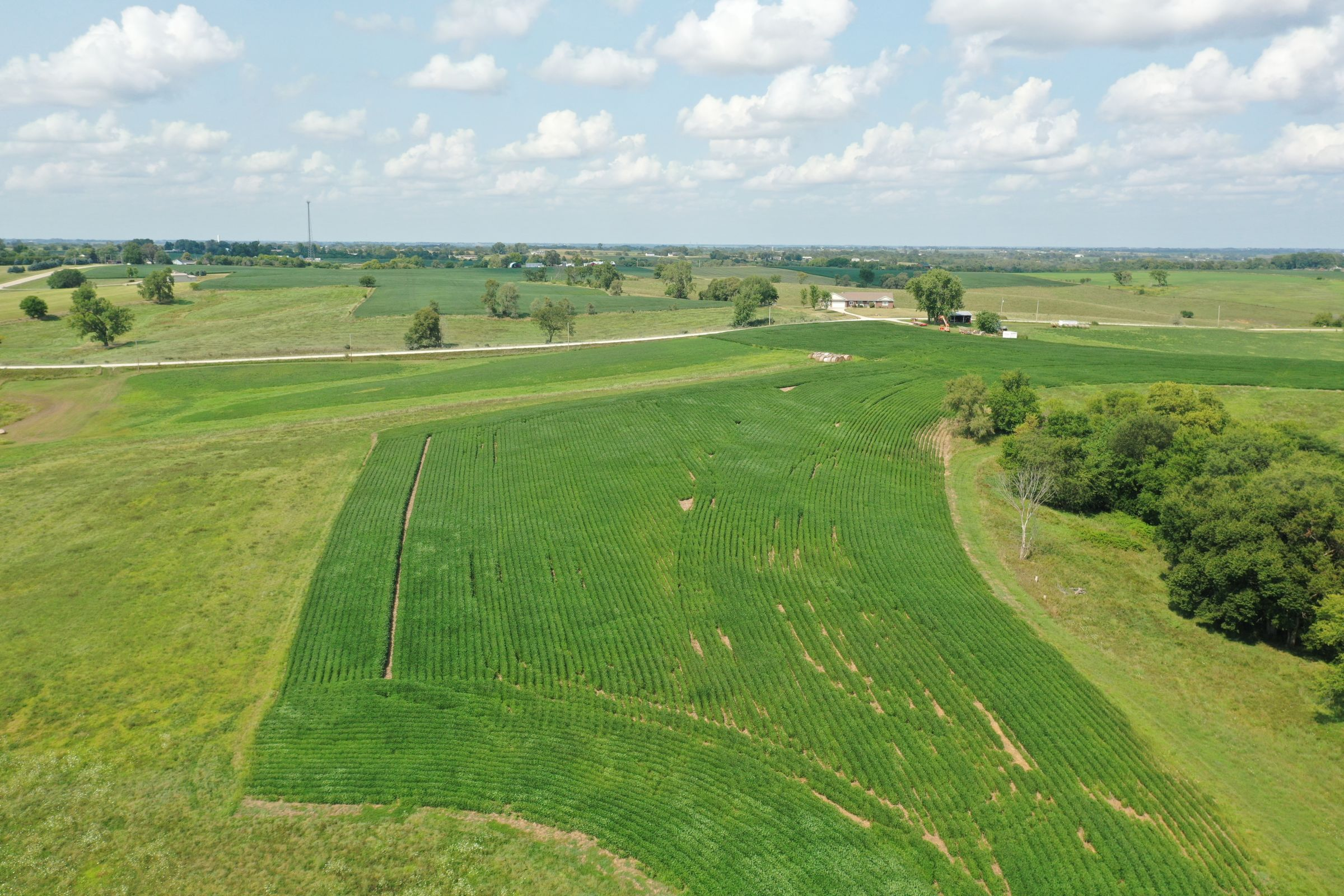 land-warren-county-iowa-12-acres-listing-number-15694-0-2021-08-20-170720.JPG