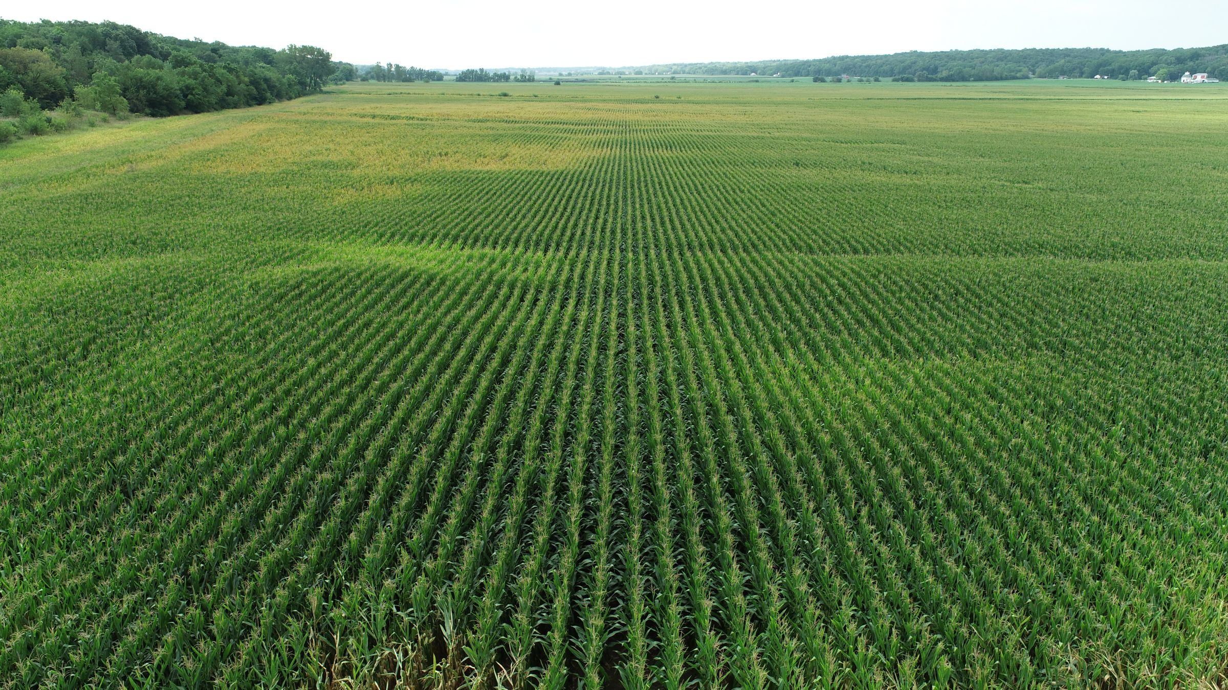 land-whiteside-county-illinois-146-acres-listing-number-15705-0-2021-08-27-180457.JPG