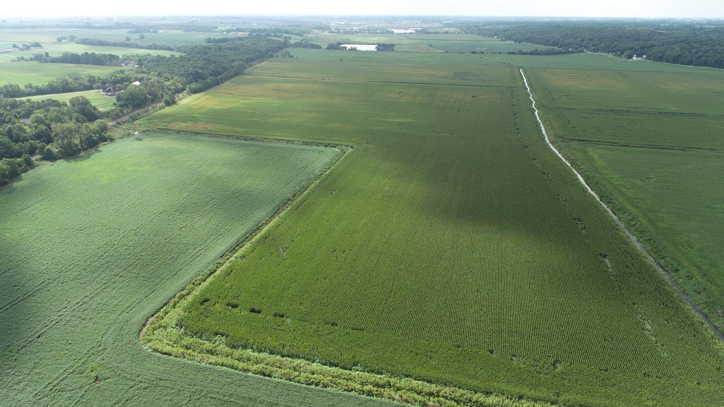 land-whiteside-county-illinois-146-acres-listing-number-15705-2-2021-08-27-180500.JPG